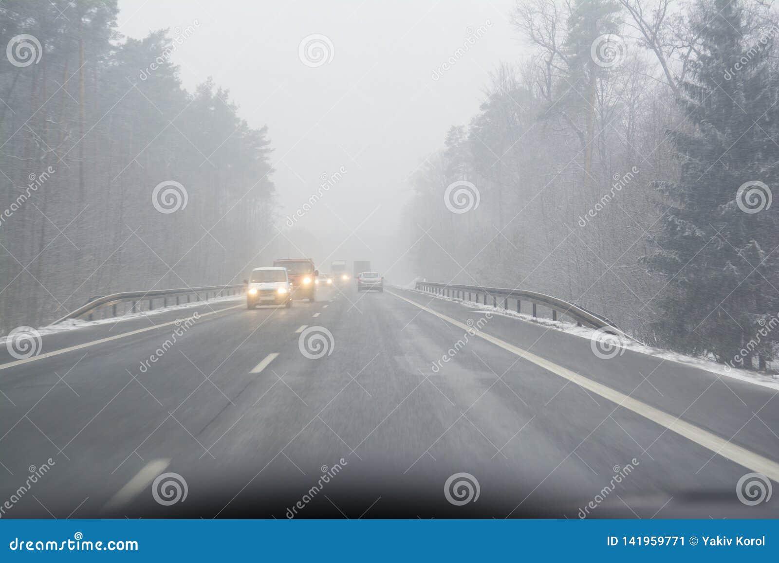 在公开路的暴风雪 first-person看法,汽车的司机在积雪的路的 具球果森林在的两边