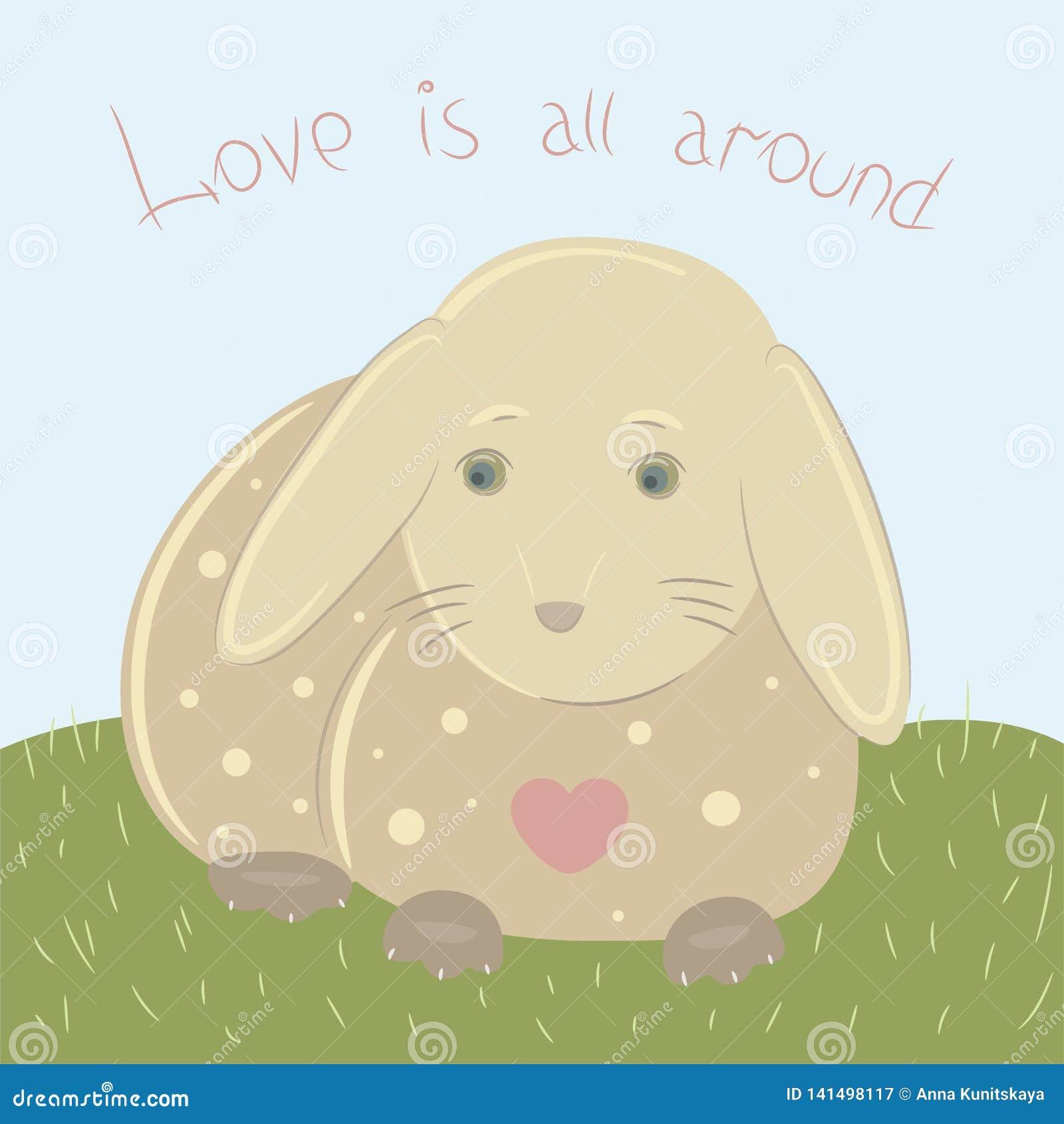 在爱的兔宝宝