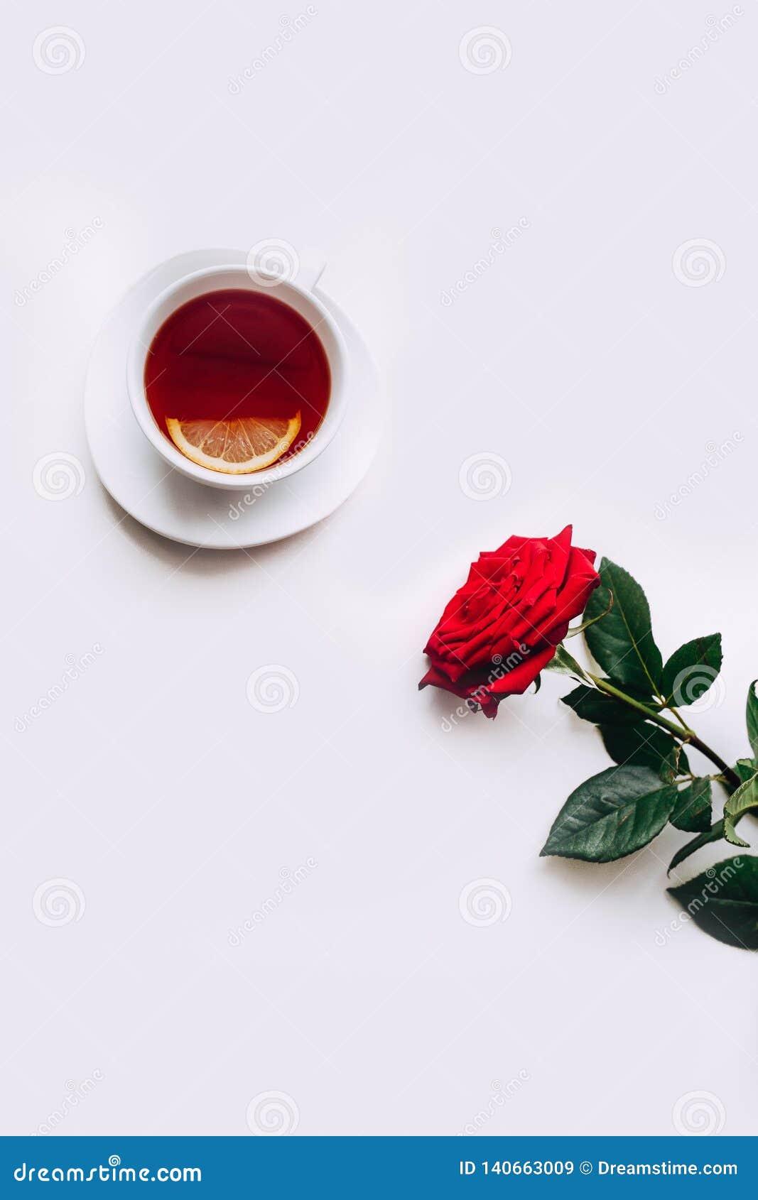 在白色背景的红色玫瑰,茶在3月8日前