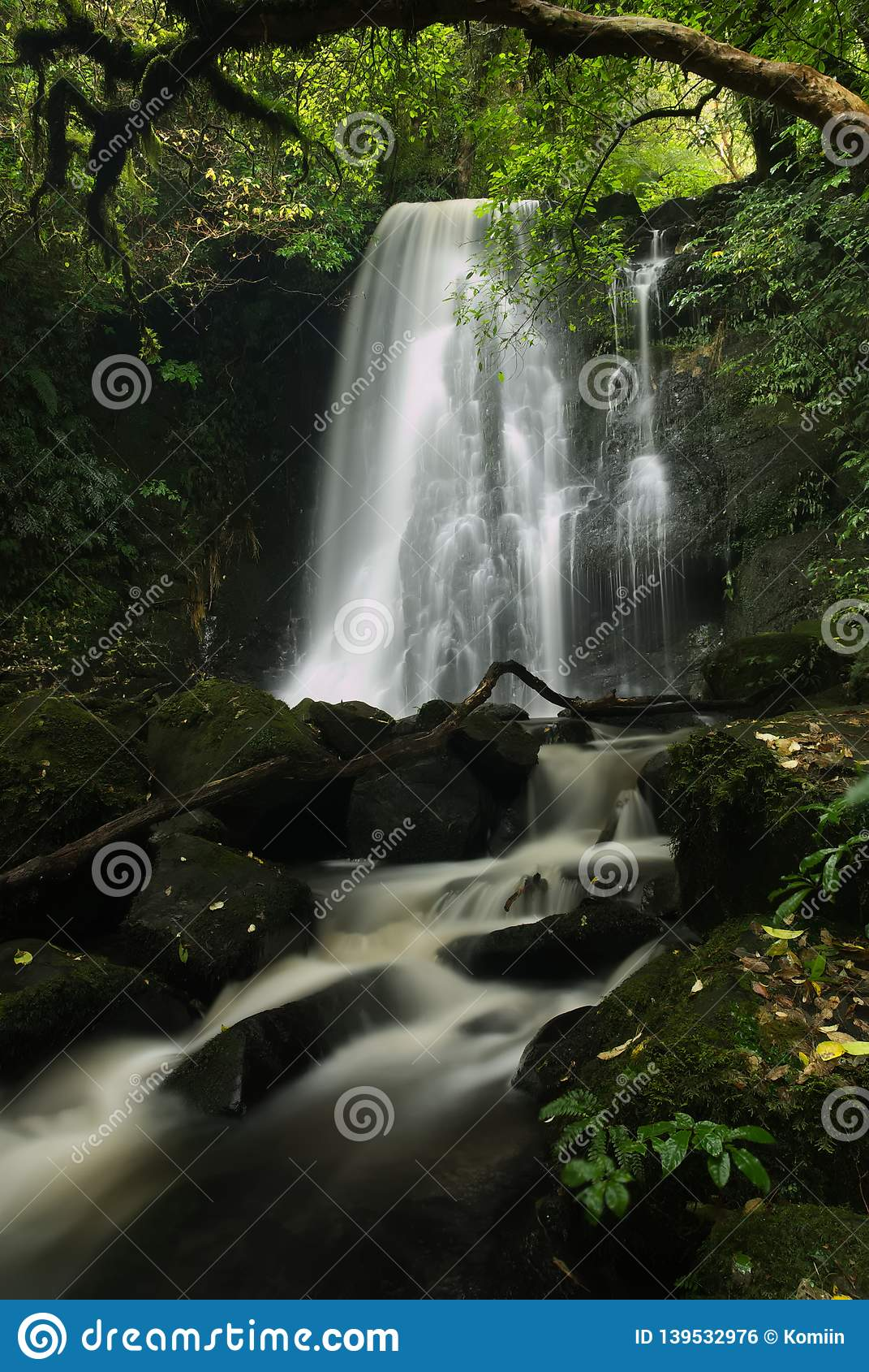 在Catlins的Matai瀑布