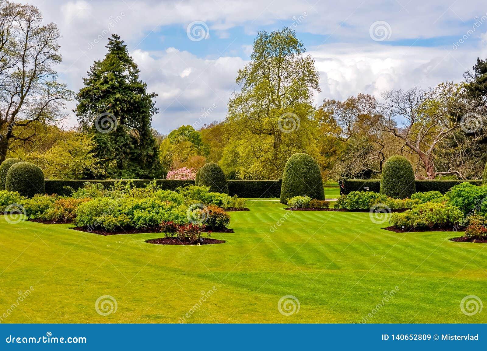 在Kew植物园,伦敦,英国里反弹