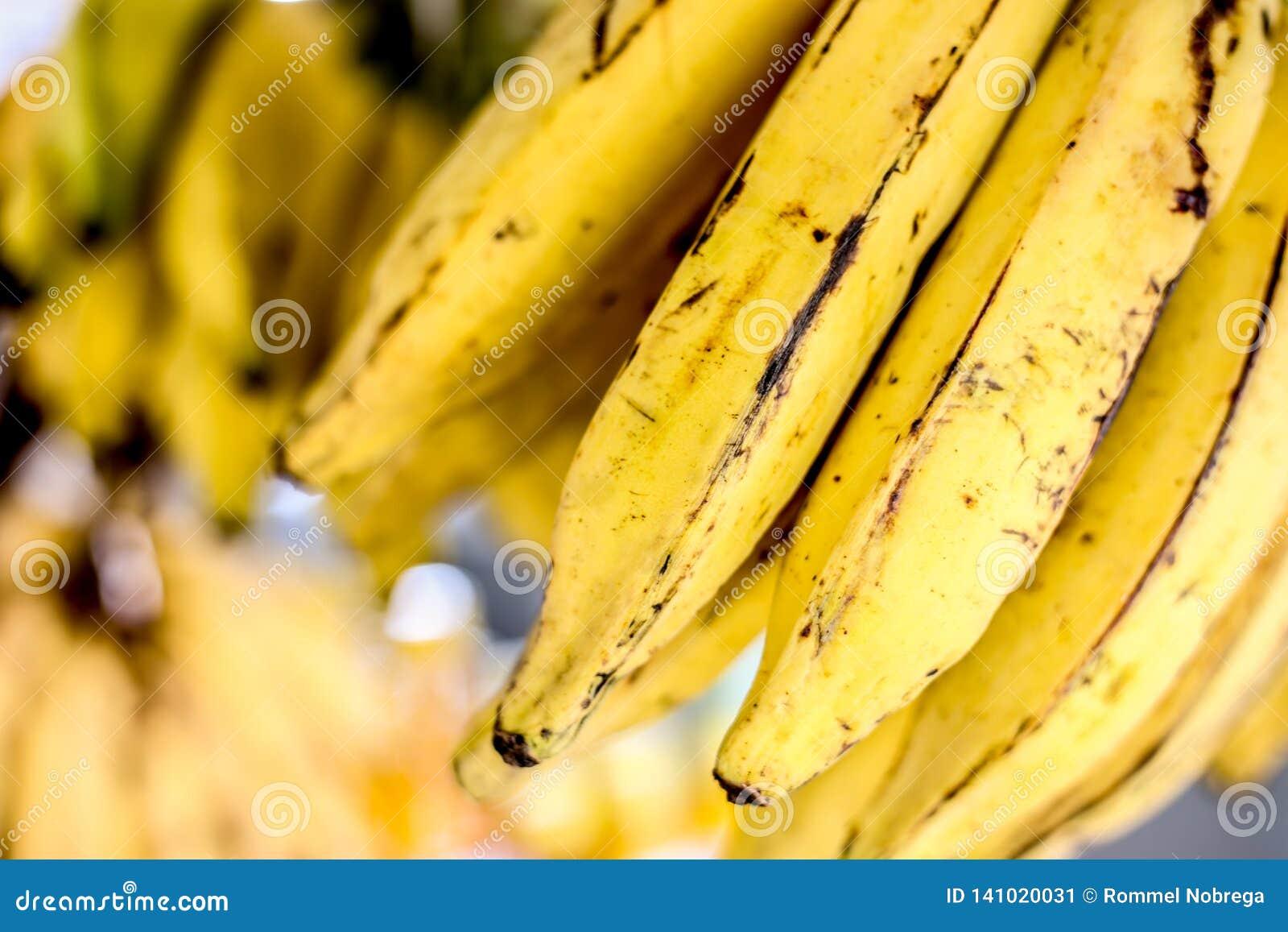 准备好新鲜的香蕉