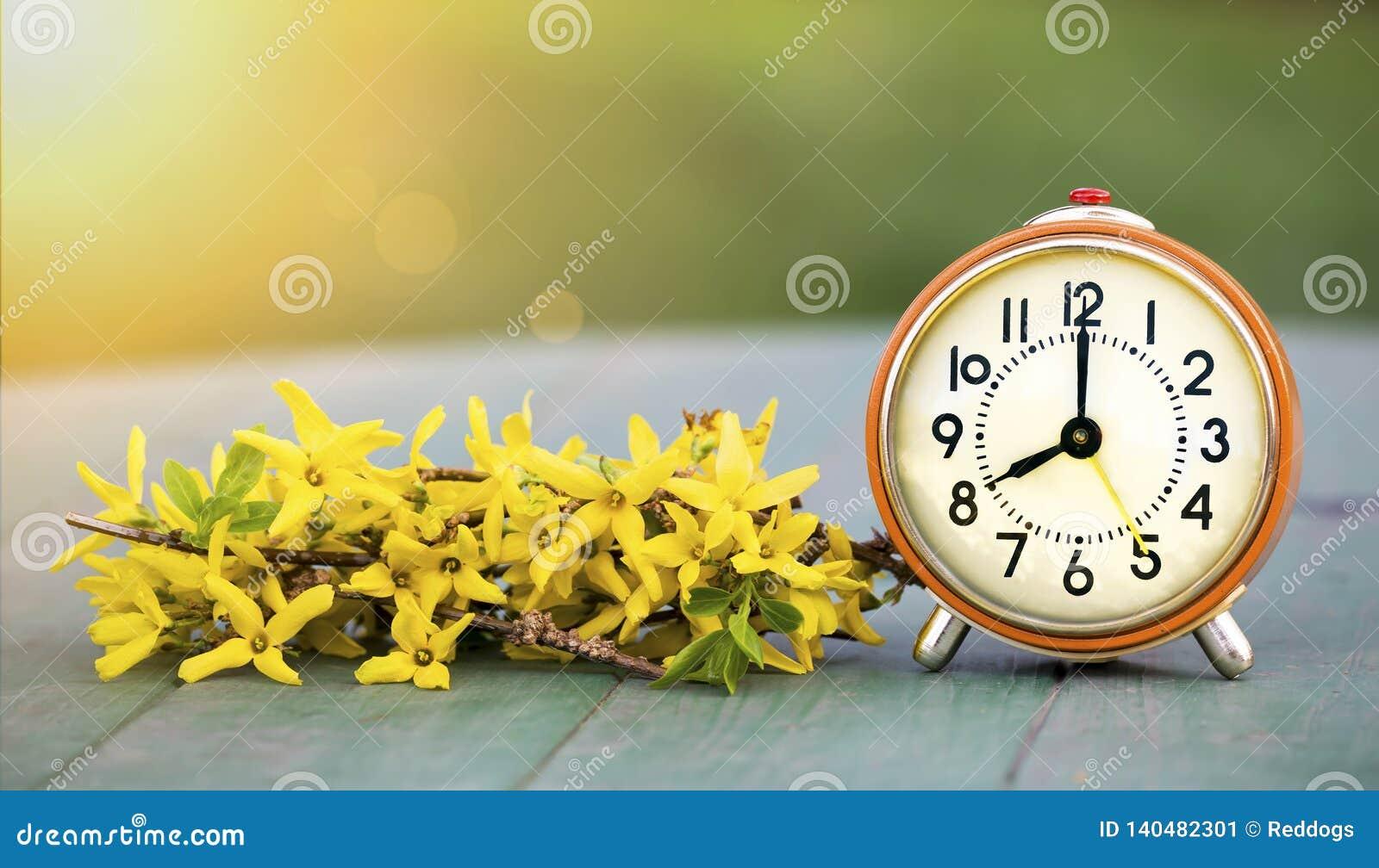 Świateł dziennych oszczędzania czas, wiosna przednia i kwiaty, - sztandar budzik