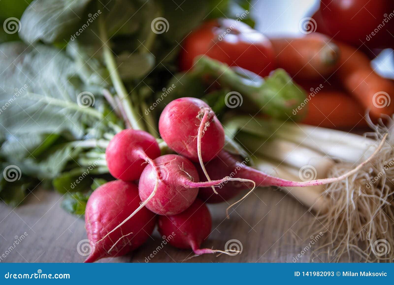 świeże organicznie rzodkwie