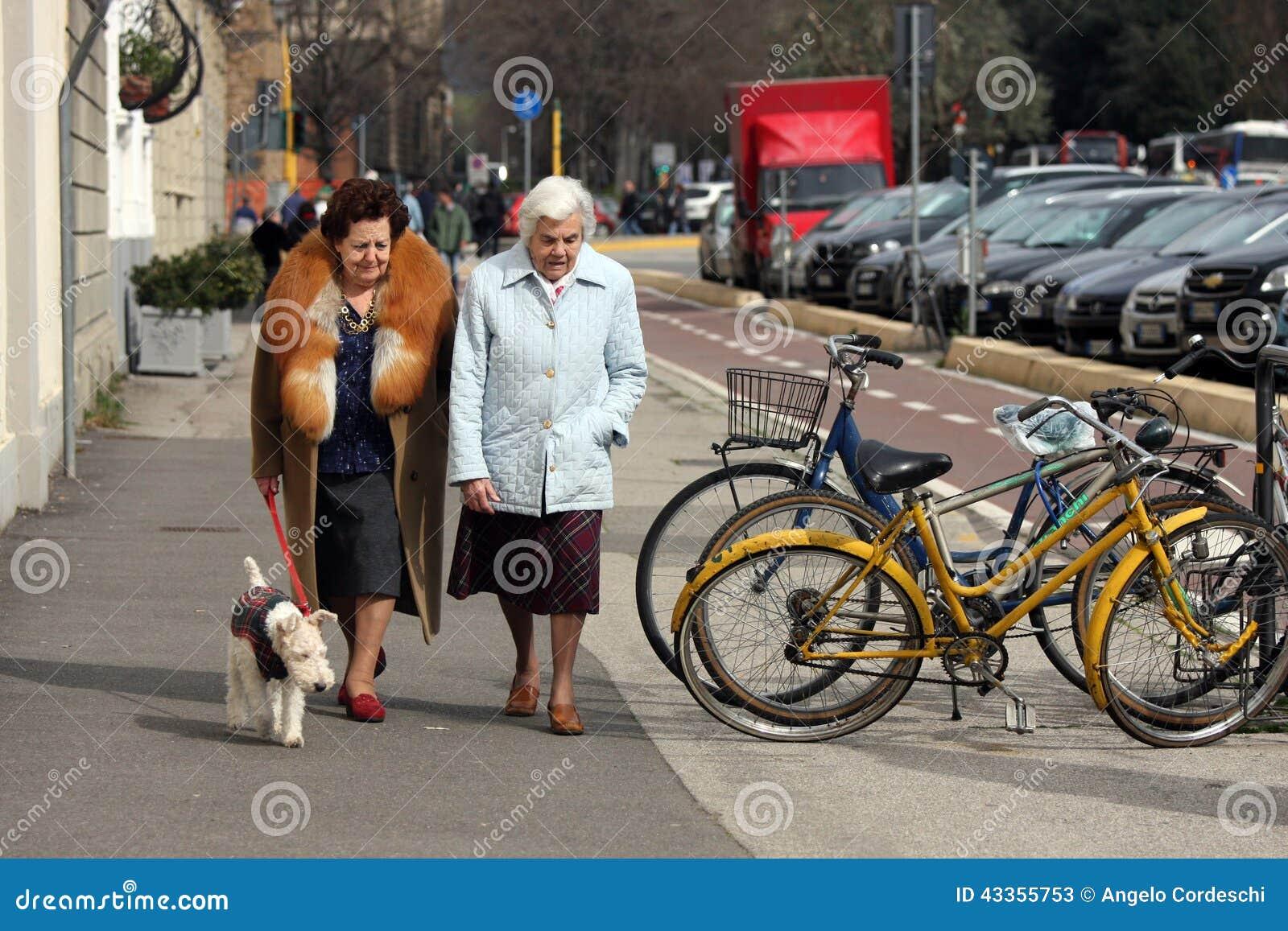 Åldring med hunden
