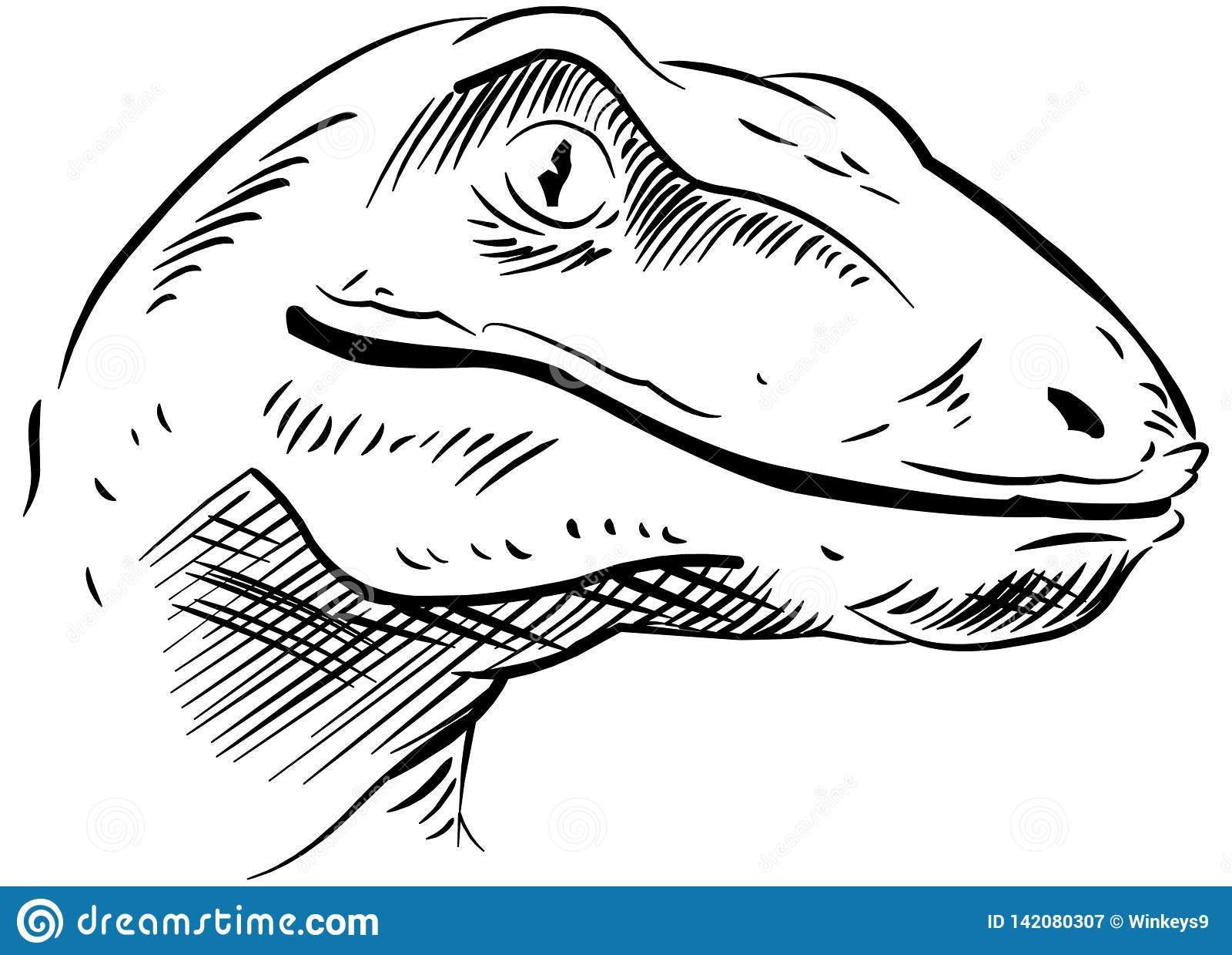 恐龙头的剪影