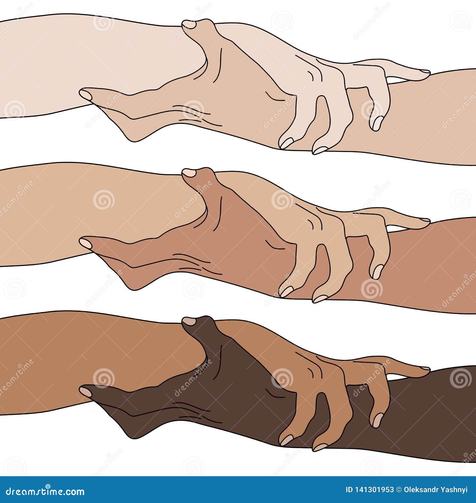 握显示团结的手 多民族平等 队,伙伴,联盟概念 关系象 也corel凹道例证向量