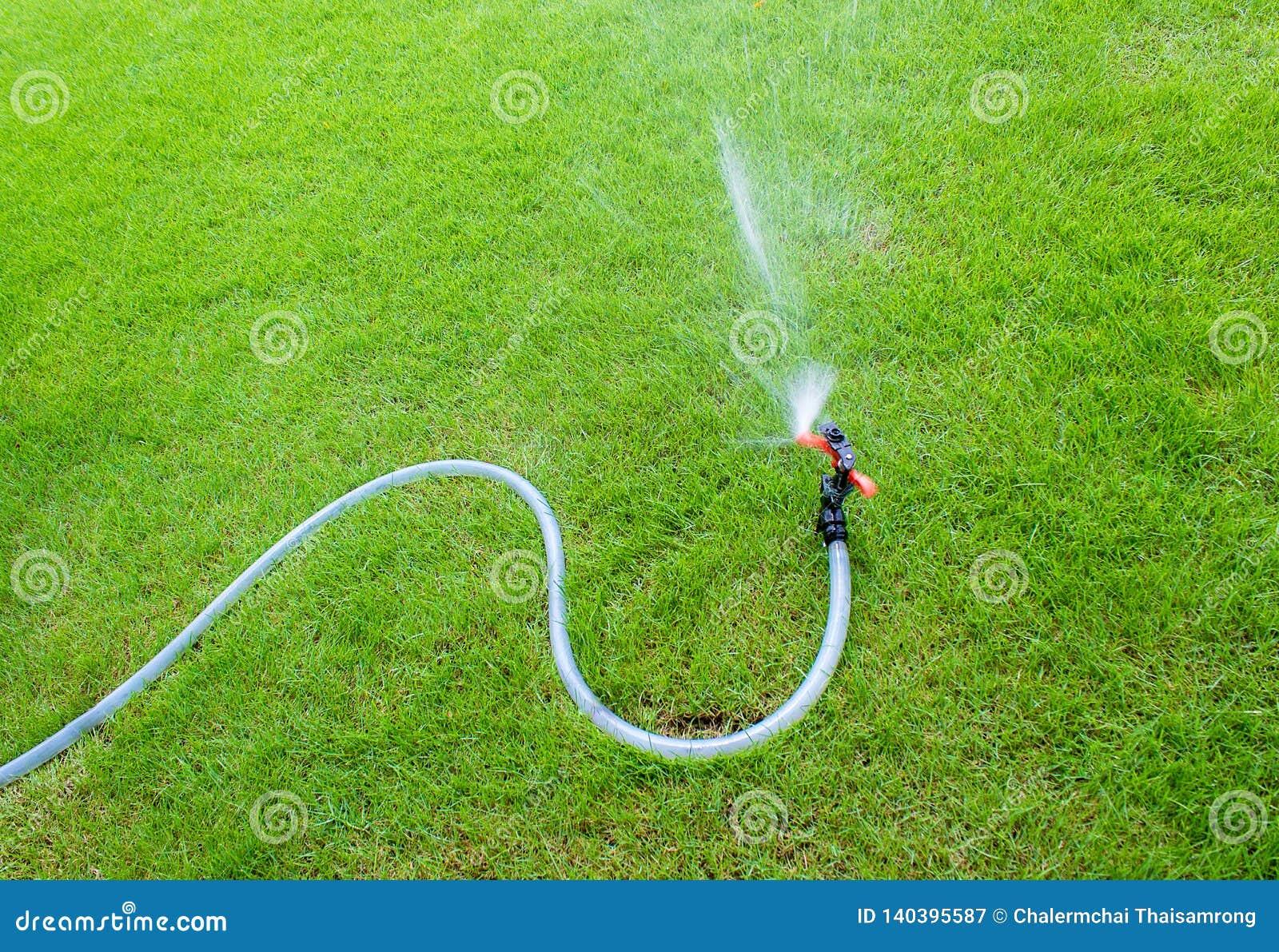 浇灌在庭院里的喷水隆头 在草坪