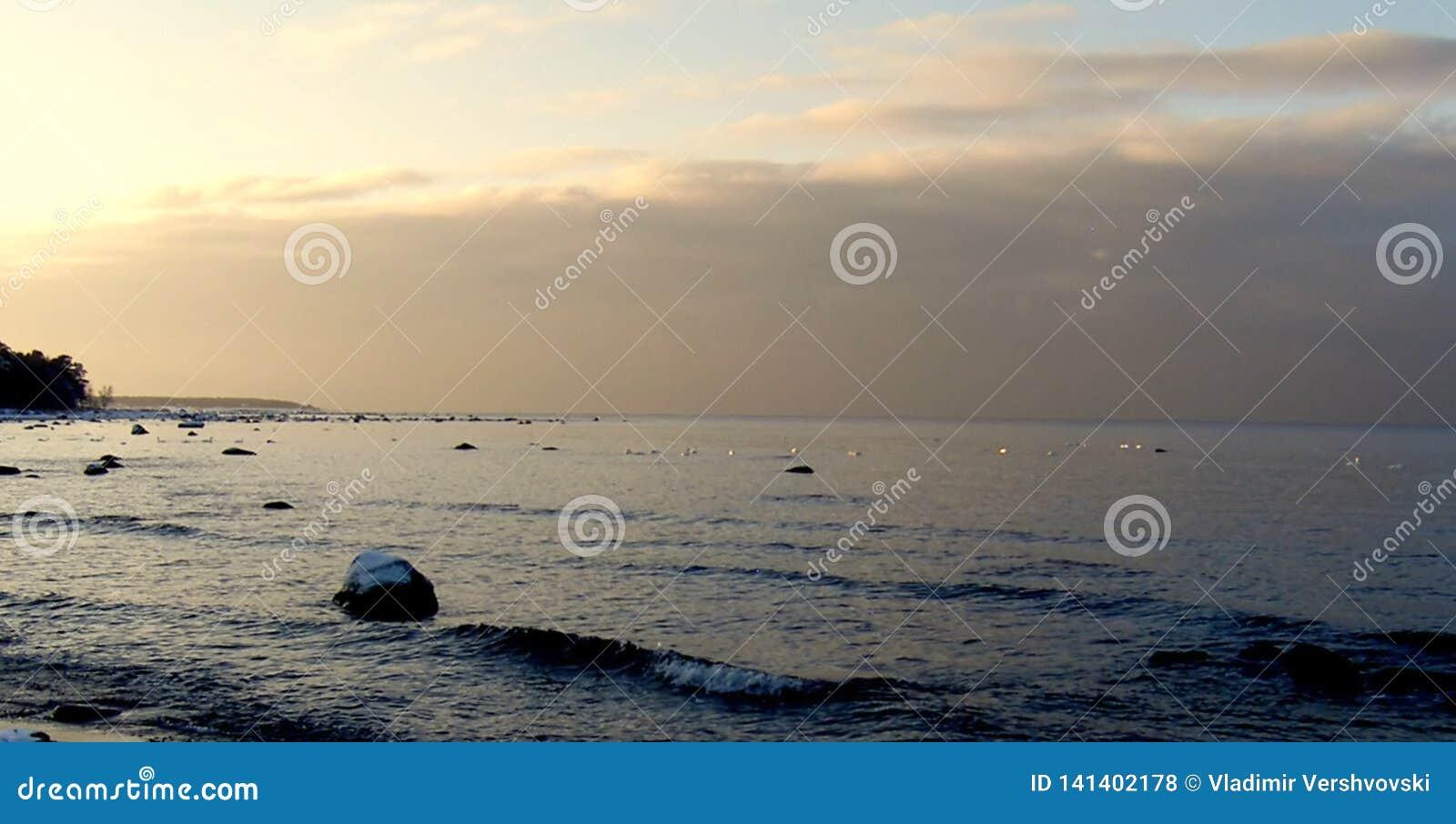滚动在海滨的懒惰波浪