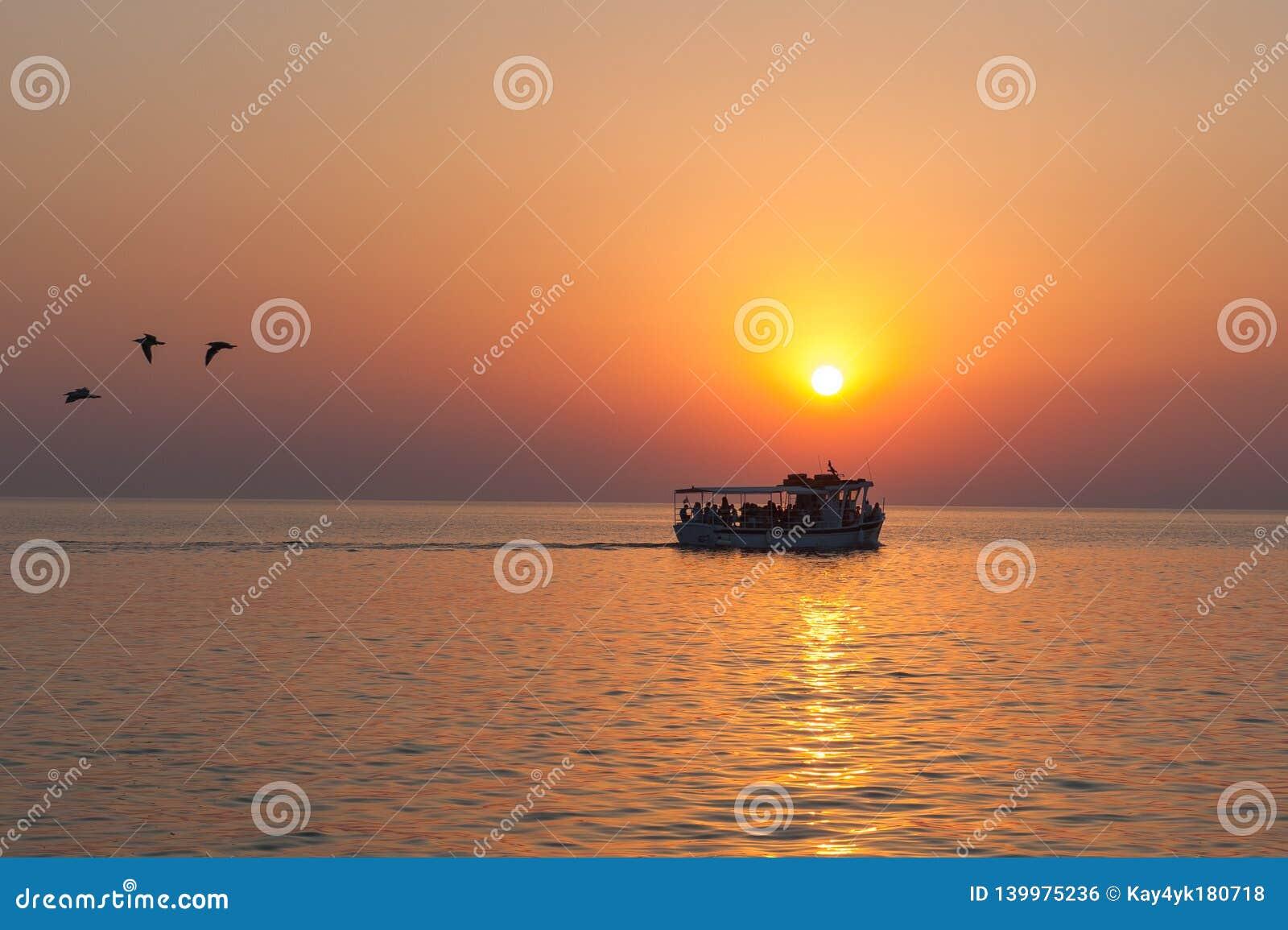 有游人的游艇与鸟飞行的日落的去