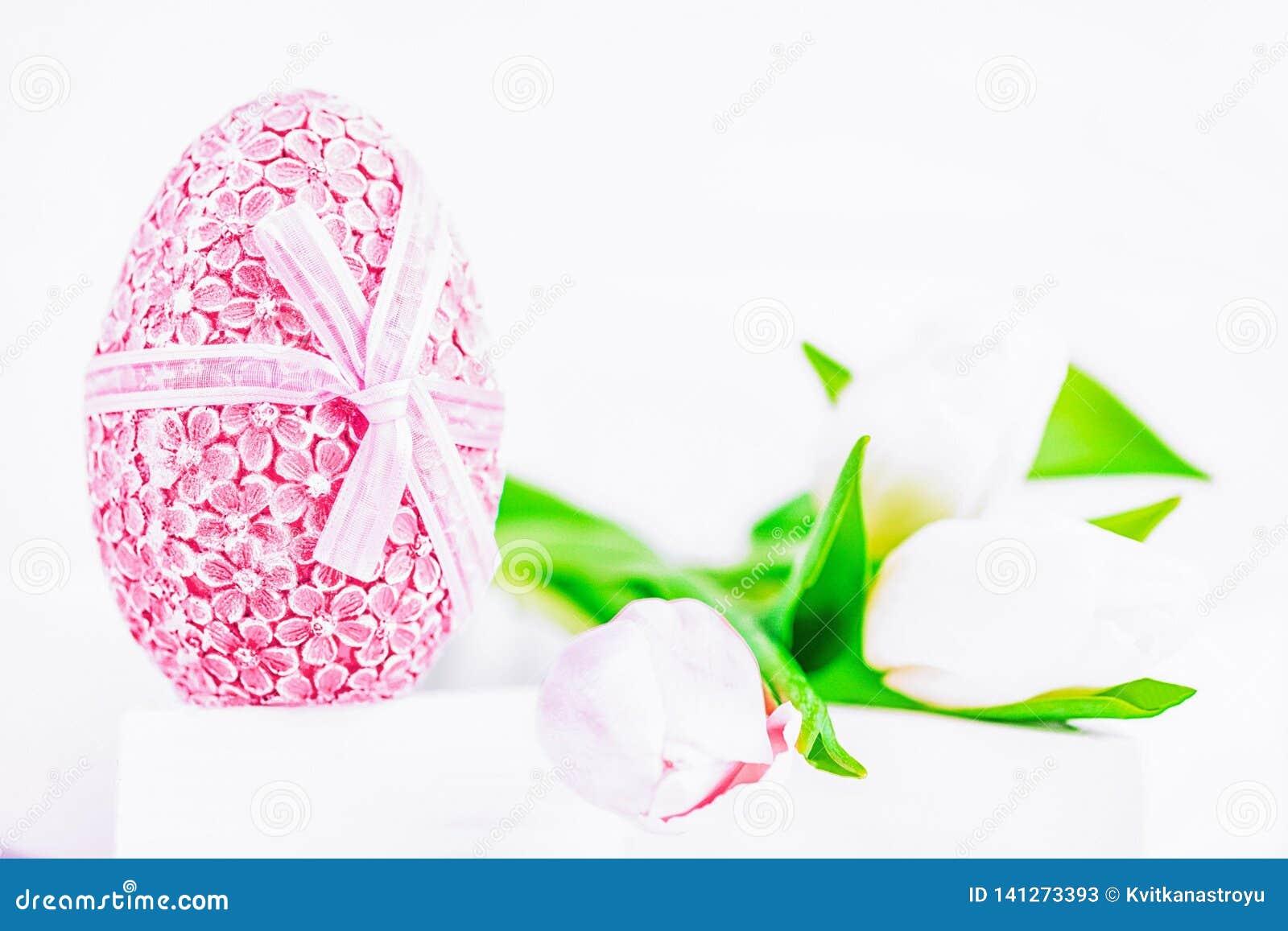 愉快的复活节 复活节蓝色鸡蛋和白色和桃红色郁金香在白色背景