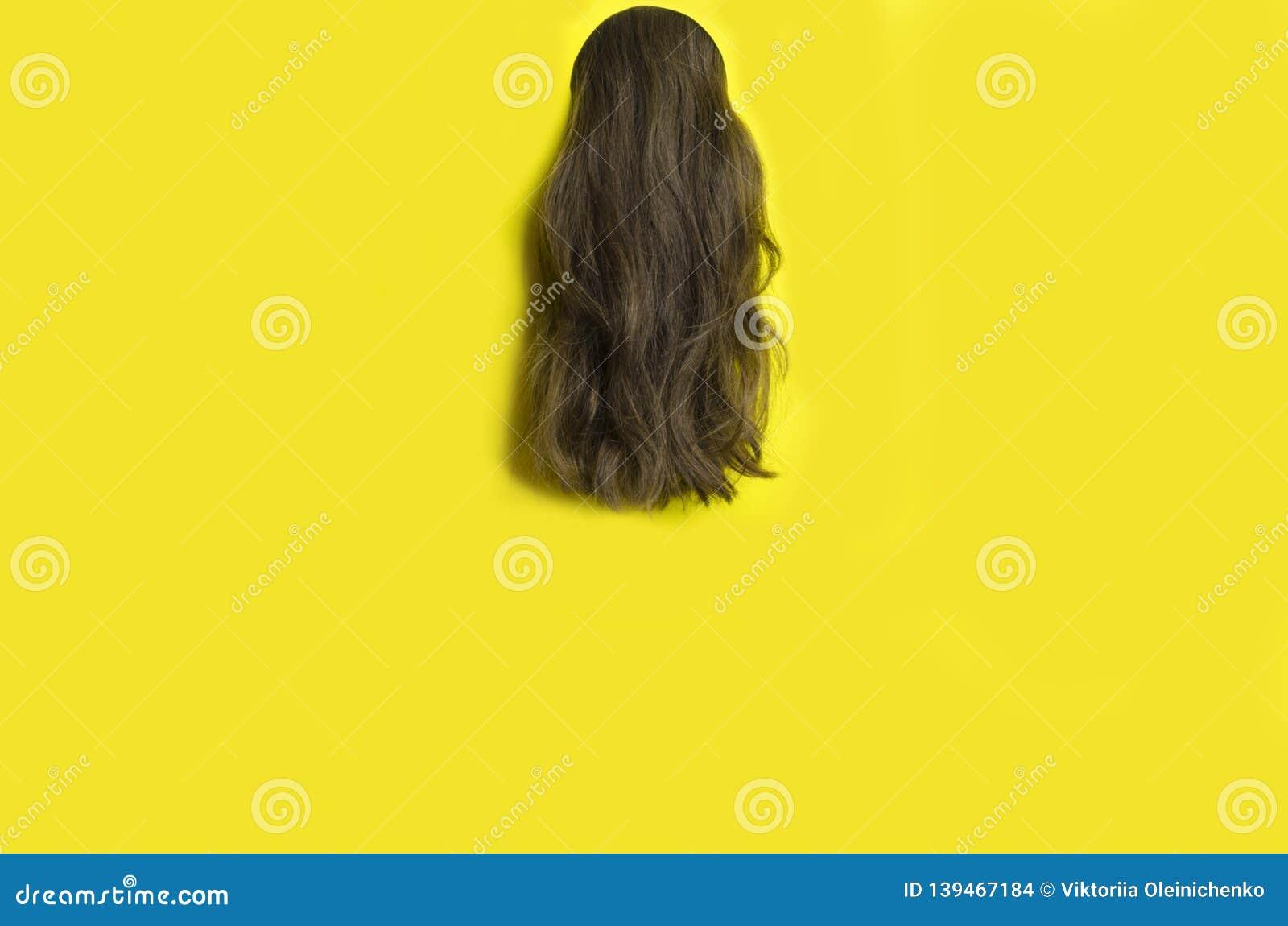 美发师的模板 反对黄色背景,拷贝空间的长的波浪发
