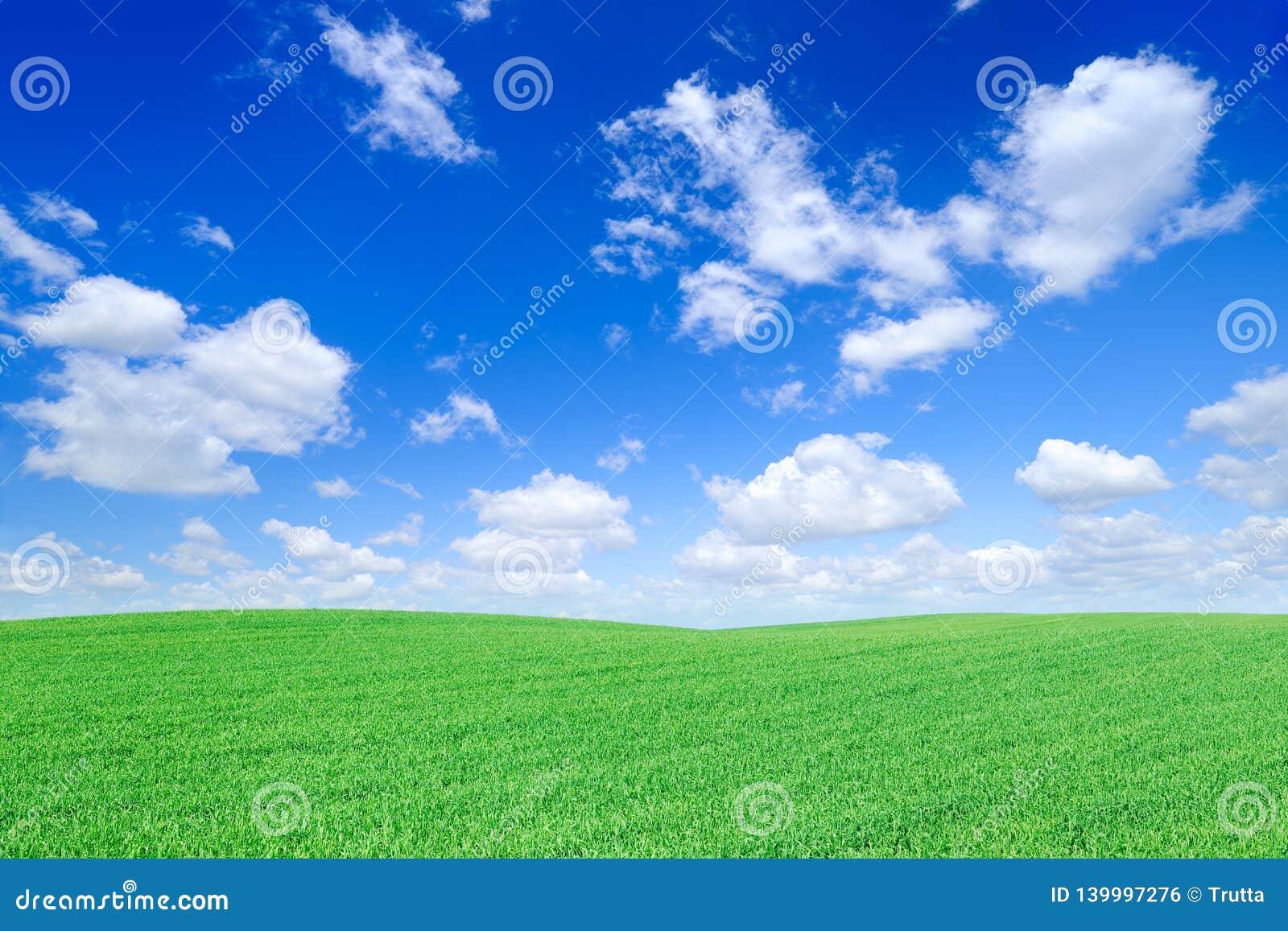田园诗看法、绿色领域和天空蔚蓝与白色云彩