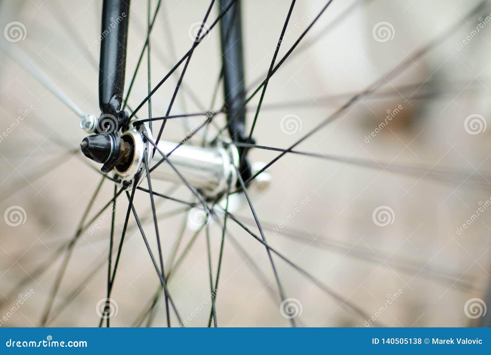 详细自行车车轮-叉子和中间
