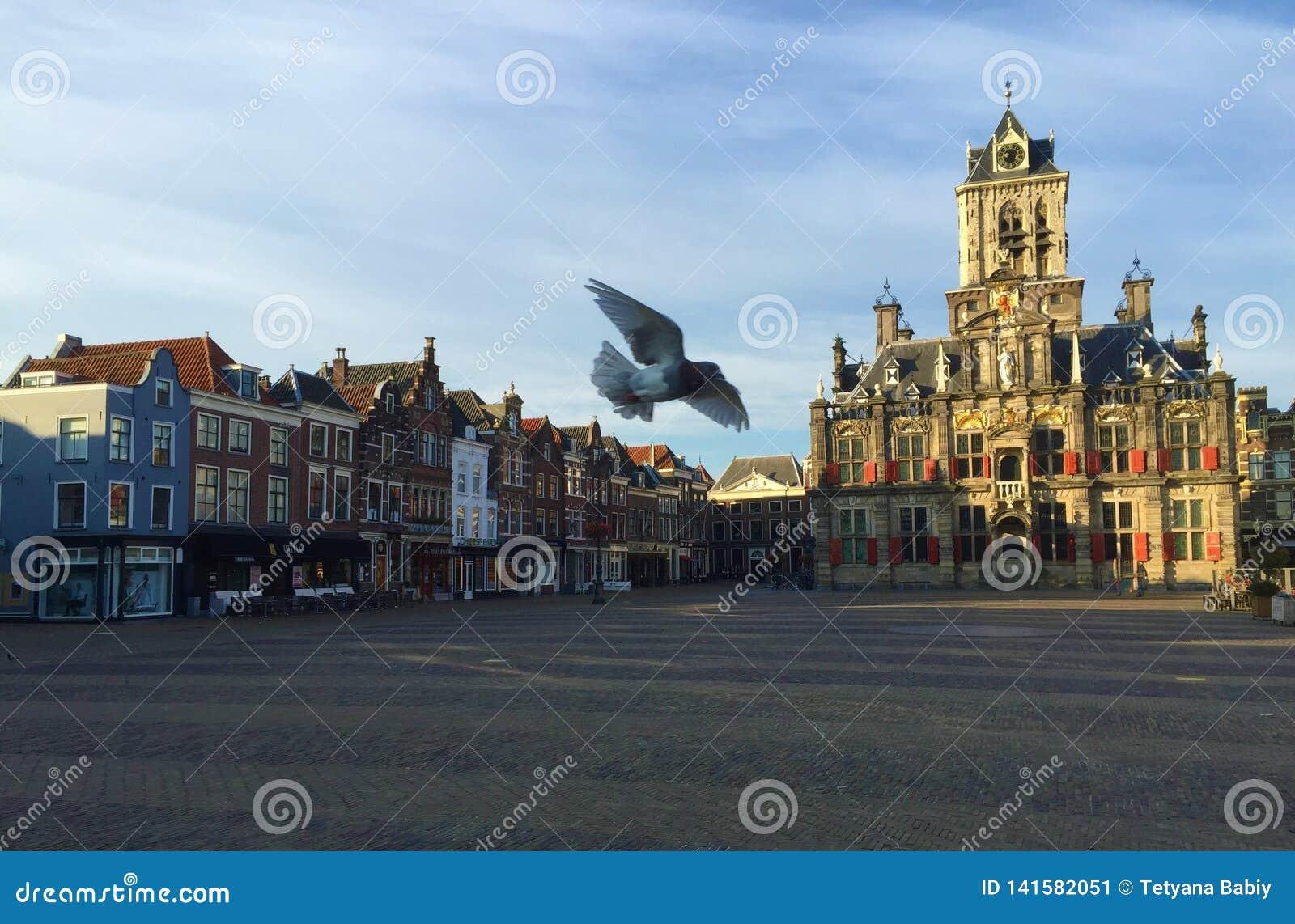 镇中心和新的教会在德尔福特,荷兰