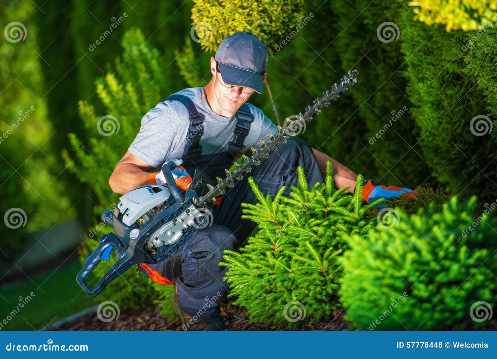 Ébarbage du travail dans un jardin