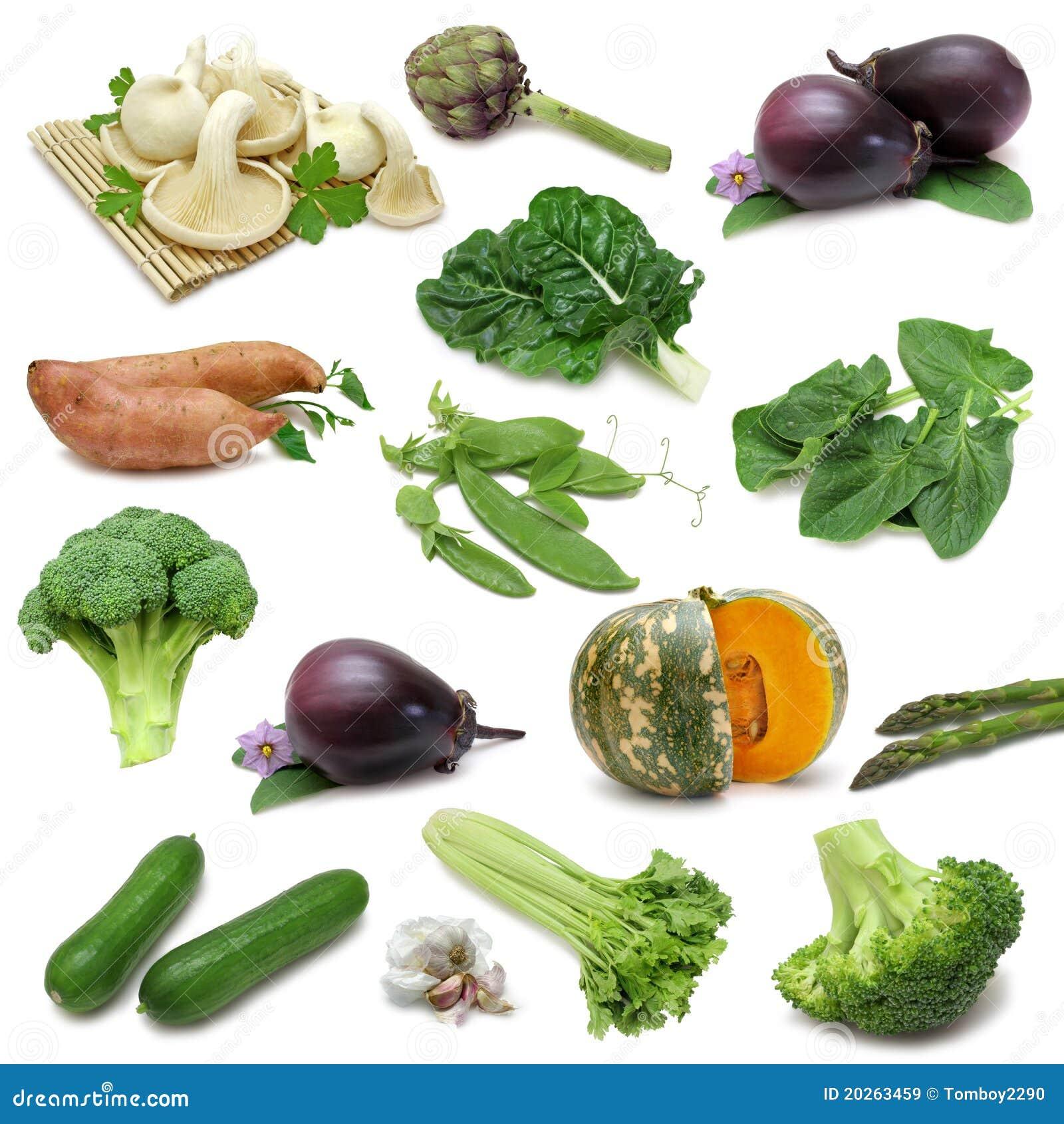 Échantillonneur végétal