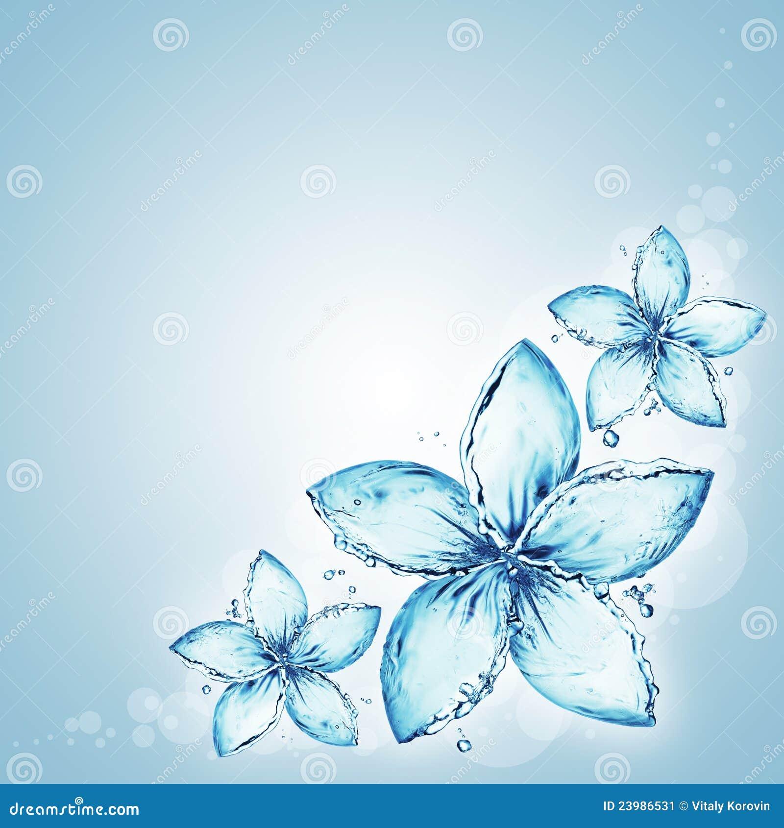 éclaboussure de l eau, fleurs