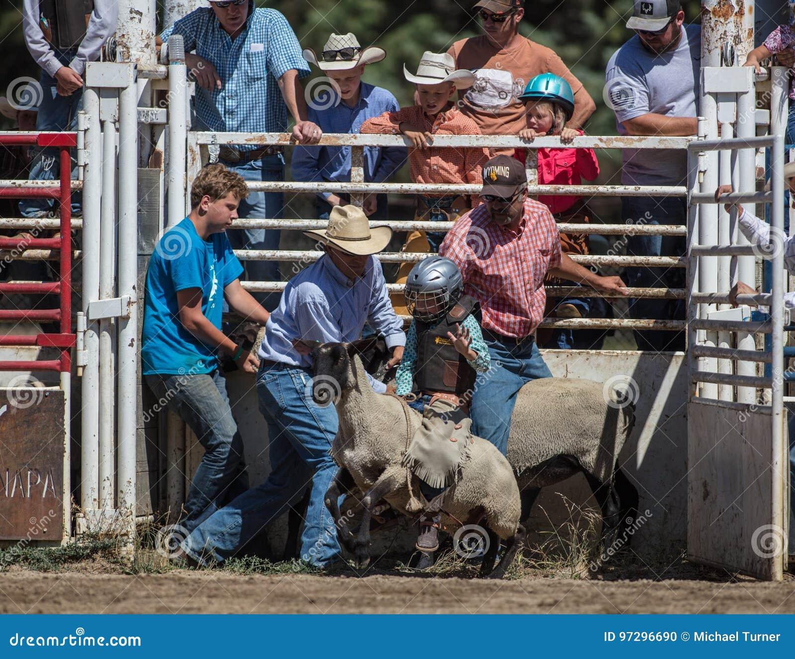 Éclater de mouton