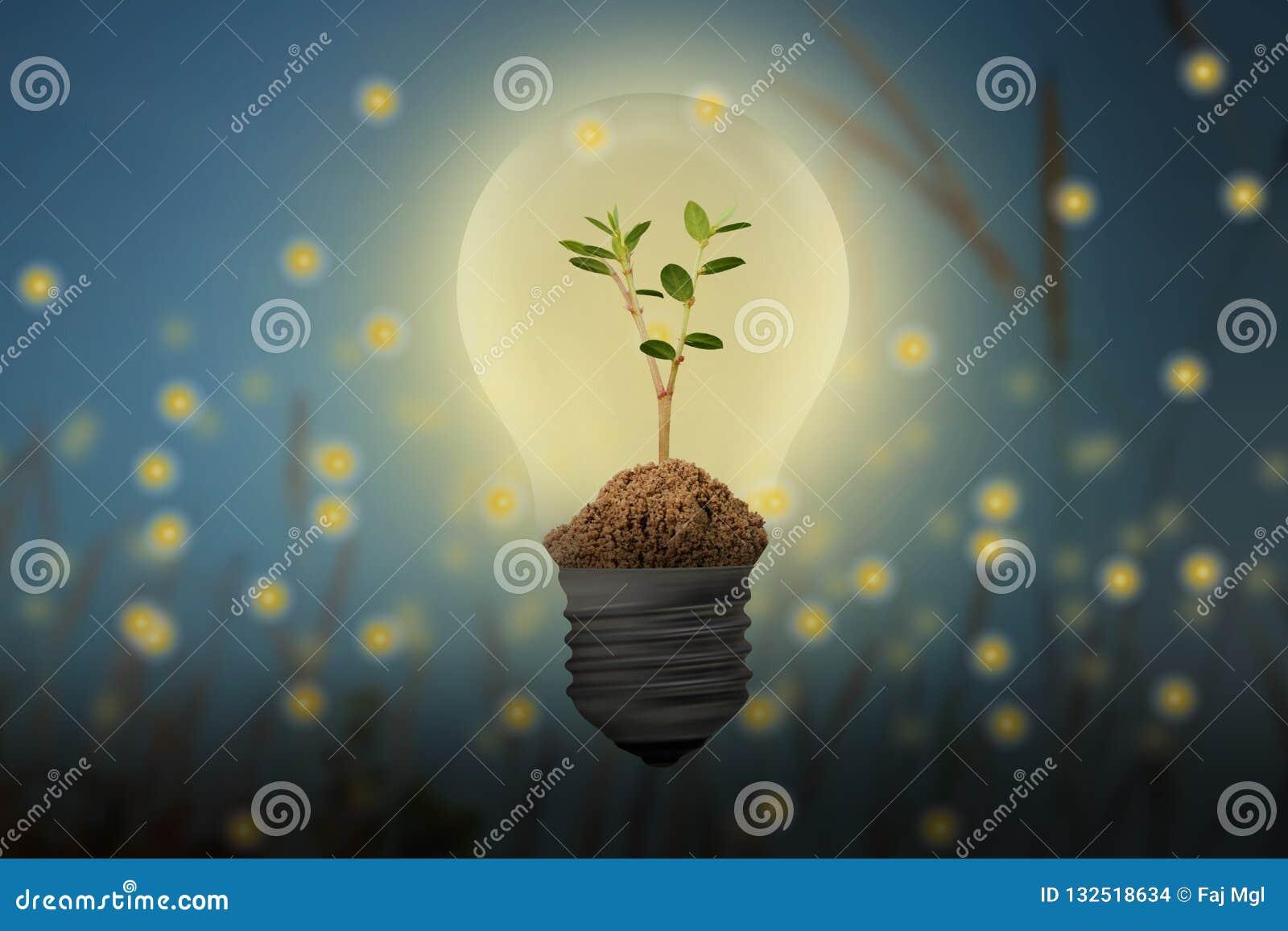 Économisez l énergie, avec le concept de lucioles et d ampoule