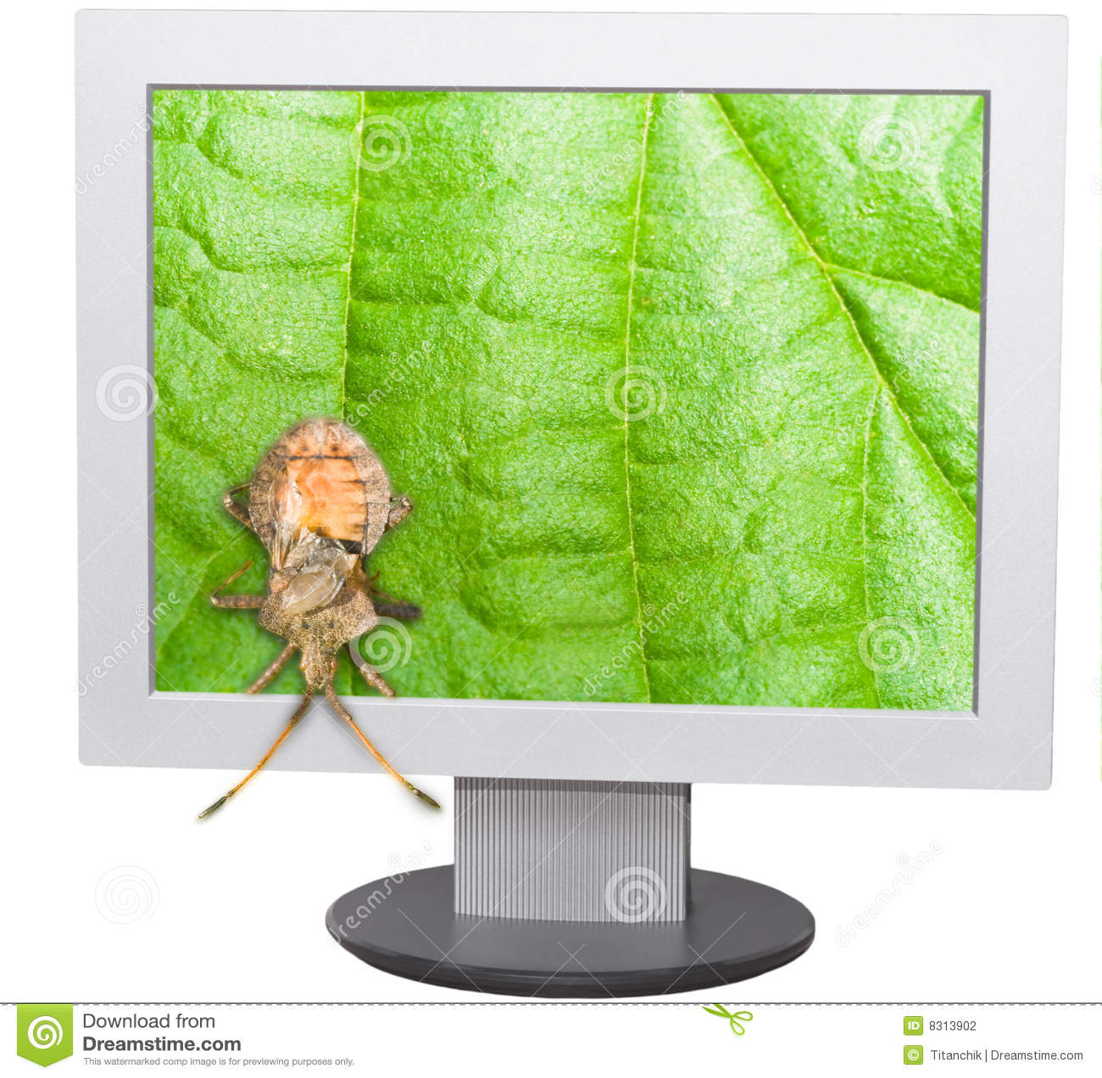 écran d ordinateur d anomalie
