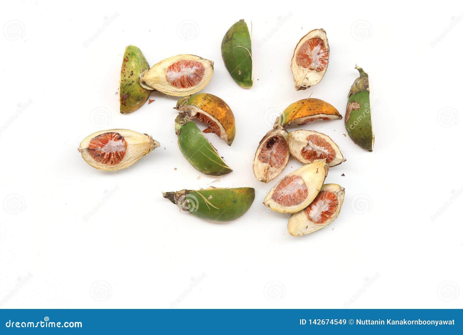 Écrou sec de noix de bétel ou d arec d isolement sur le fond blanc