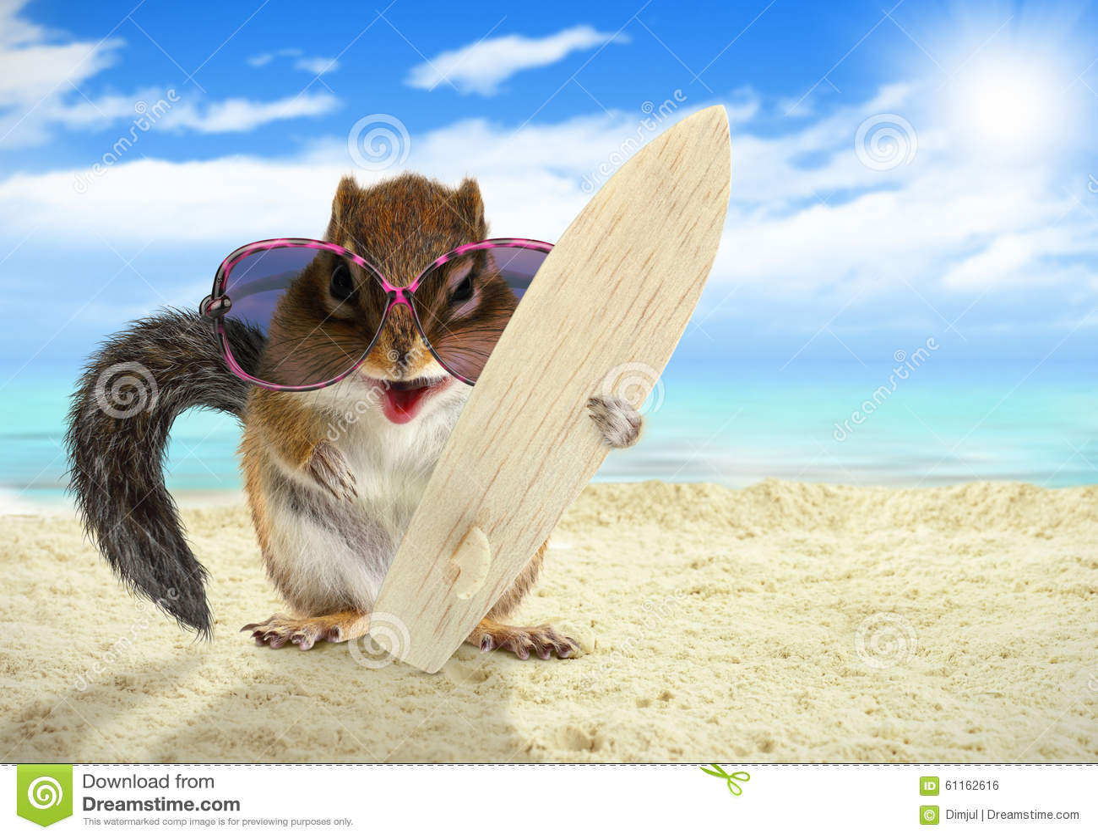 Écureuil animal drôle avec les lunettes de soleil et la planche de surf sur la plage