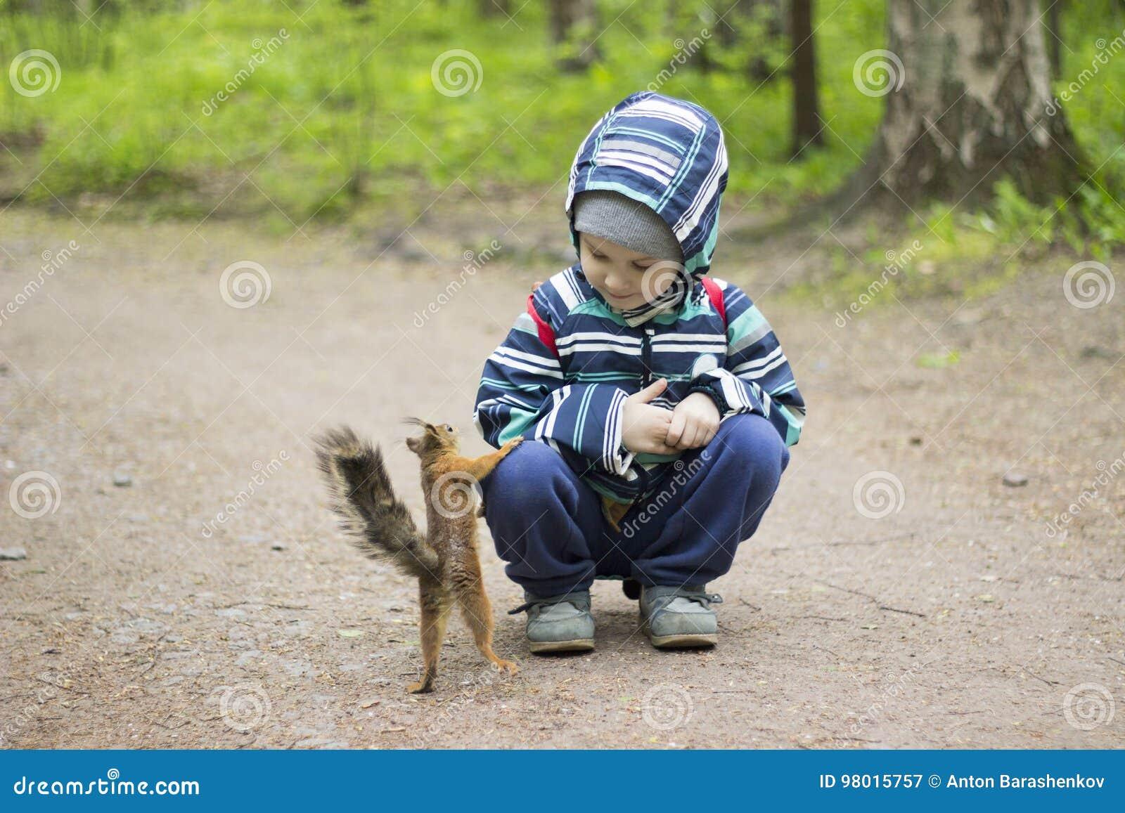 Écureuil de jeu d enfant en bas âge en parc Nature de rassemblement d enfants