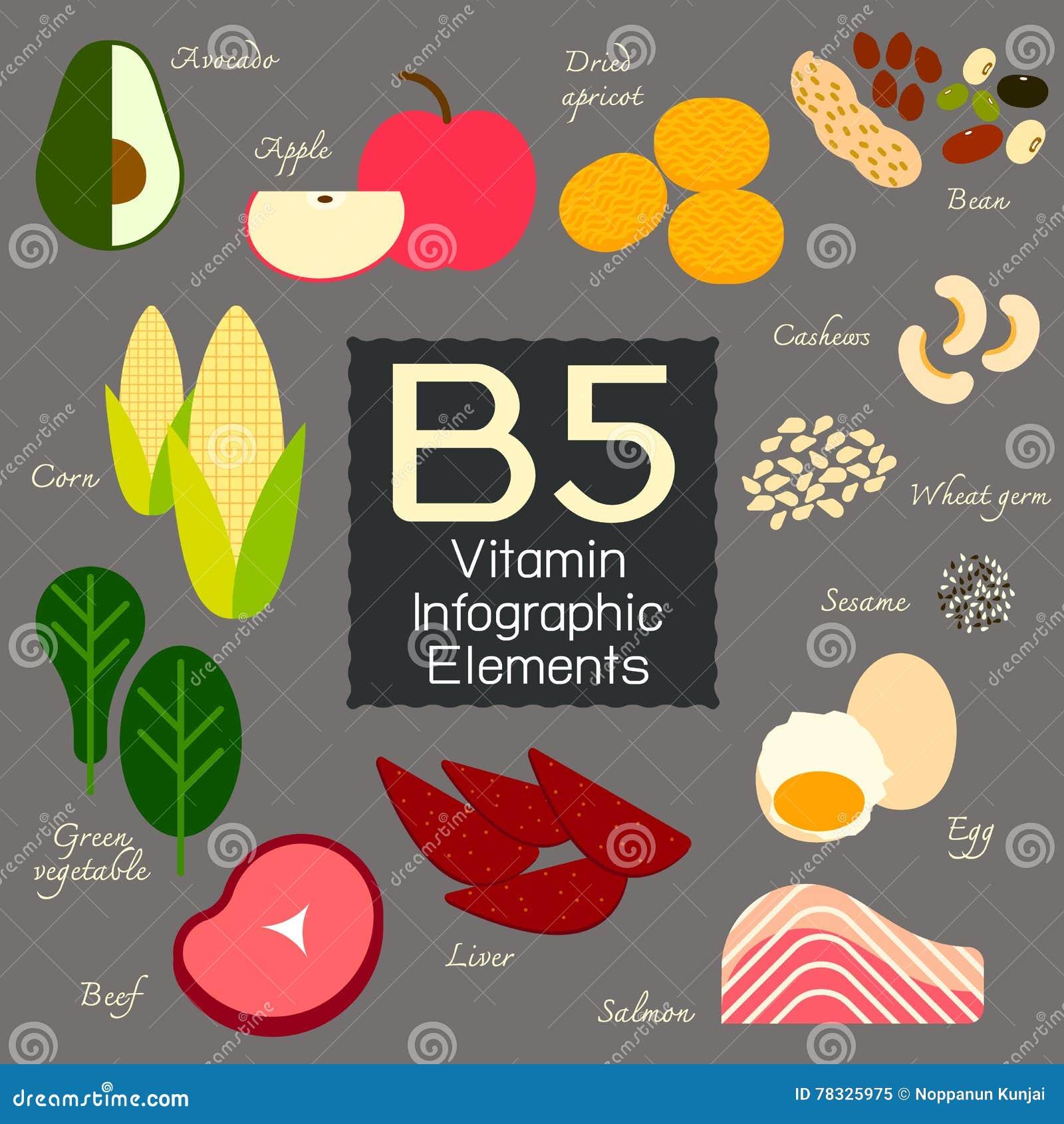Élément infographic de la vitamine B5