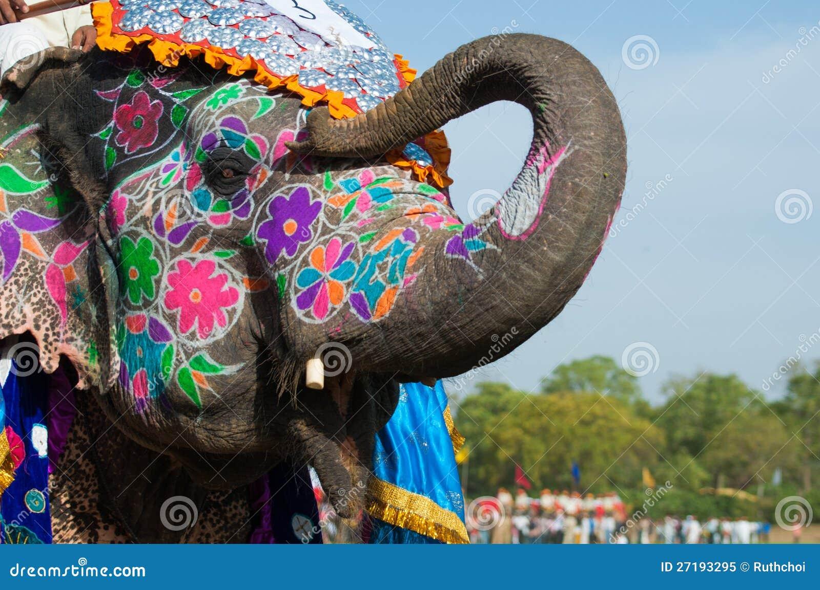 Éléphant admirablement peint en Inde
