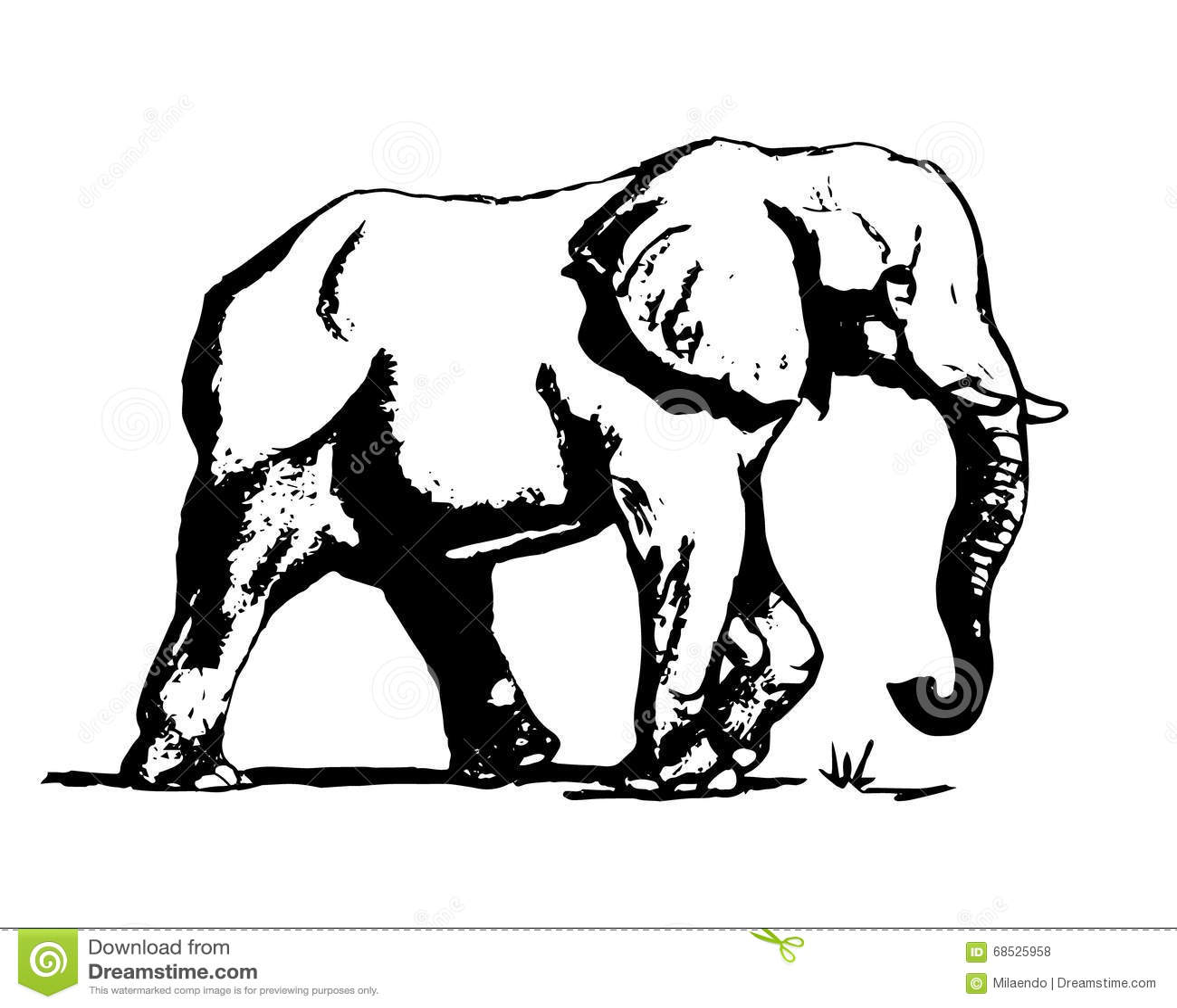éléphant Dans 01 Noirs Et Blancs Illustration De Vecteur