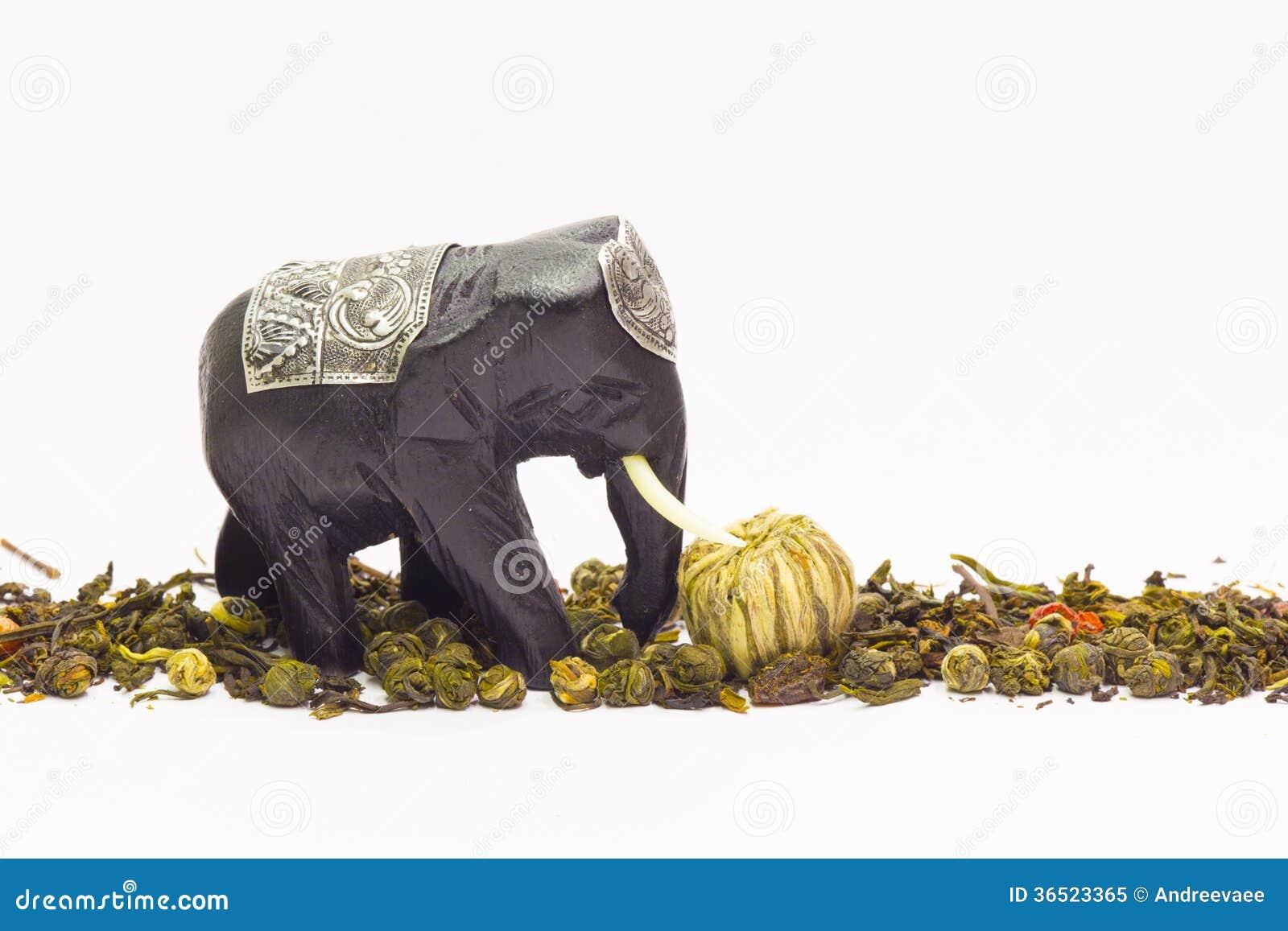 Éléphant et thé vert