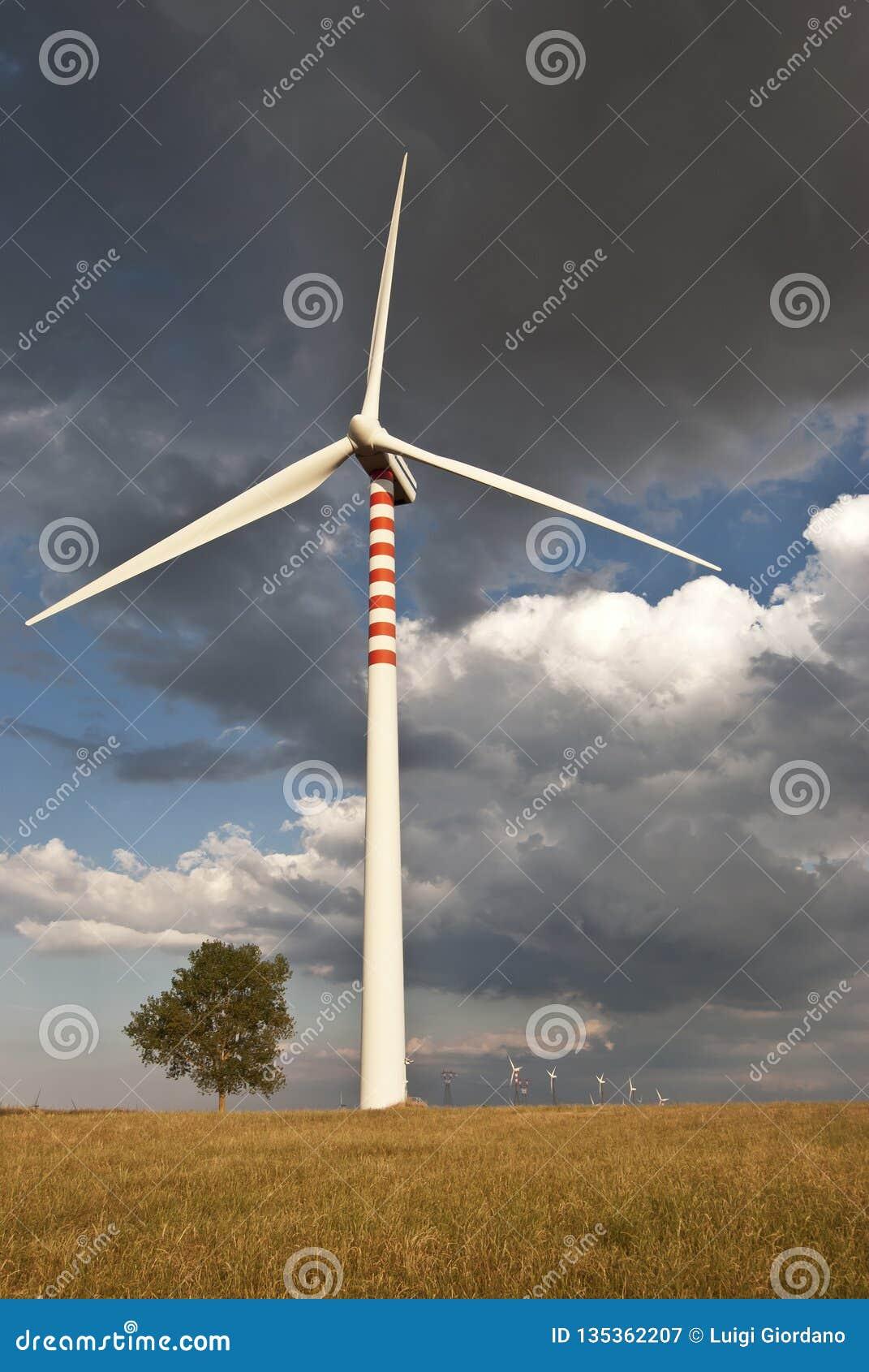 Énergie renouvelable et développement durable