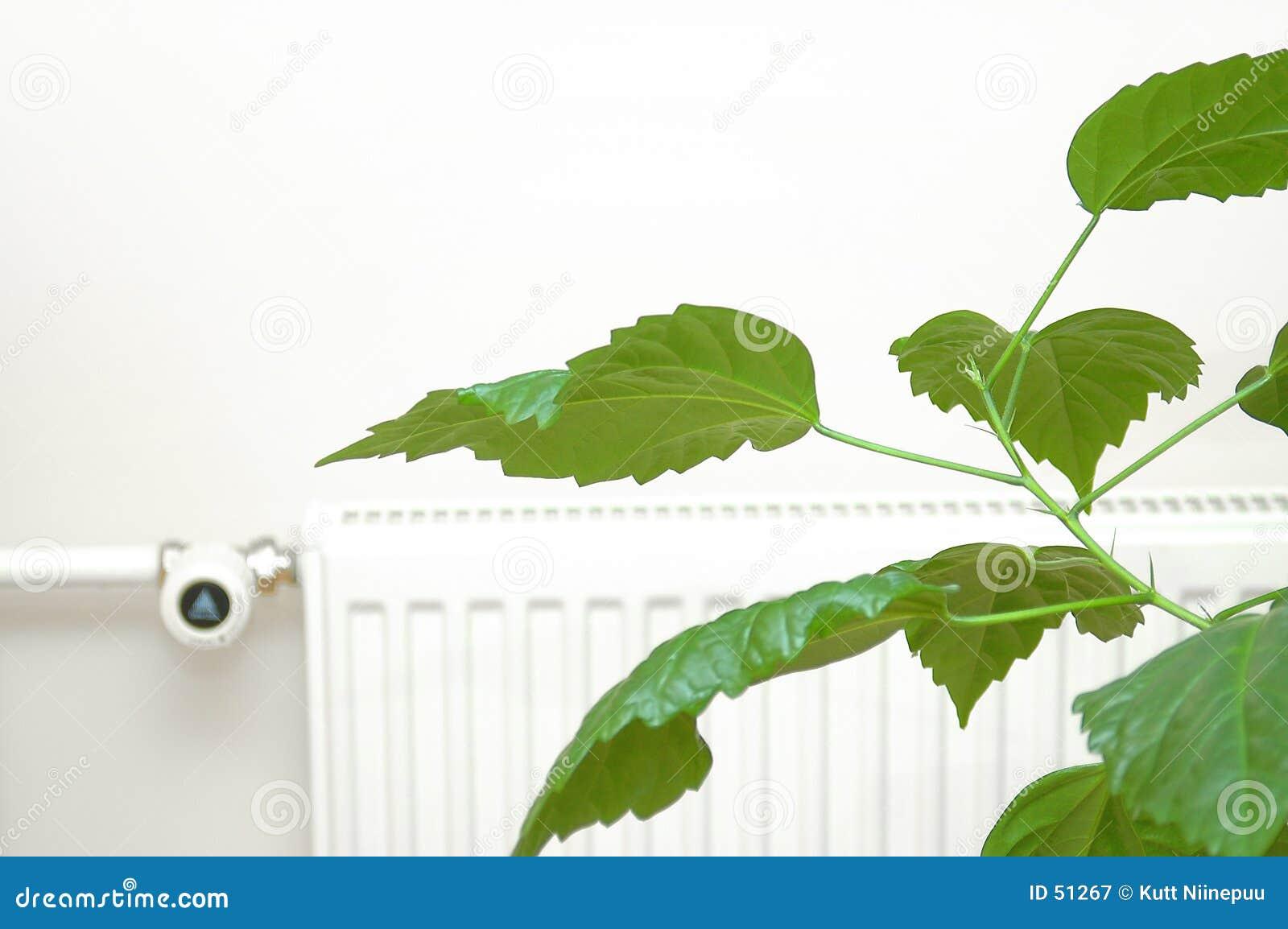 Download Énergie verte image stock. Image du centrale, radiateur - 51267