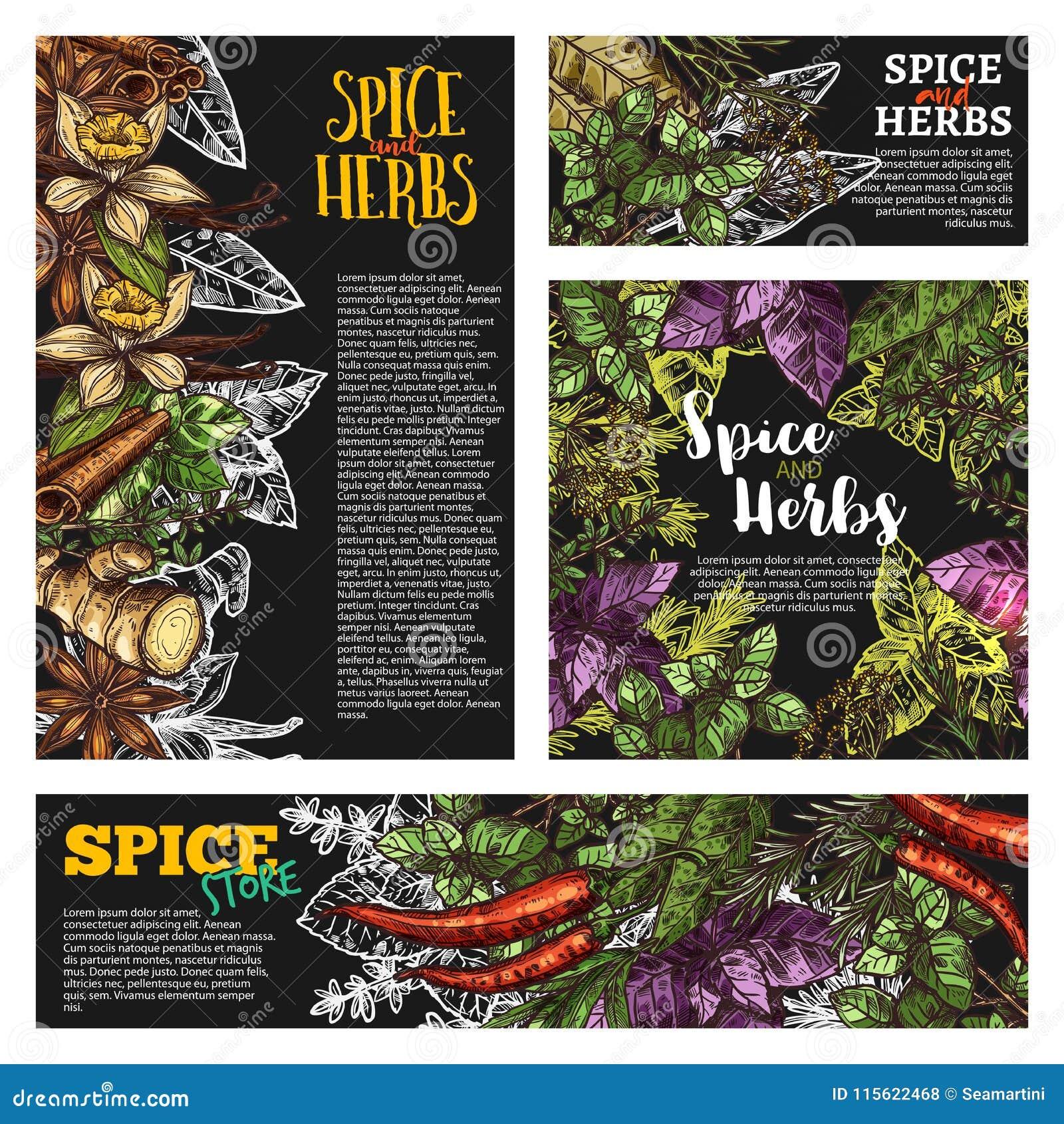 Épice et herbe, bannière de tableau noir d assaisonnement de nourriture
