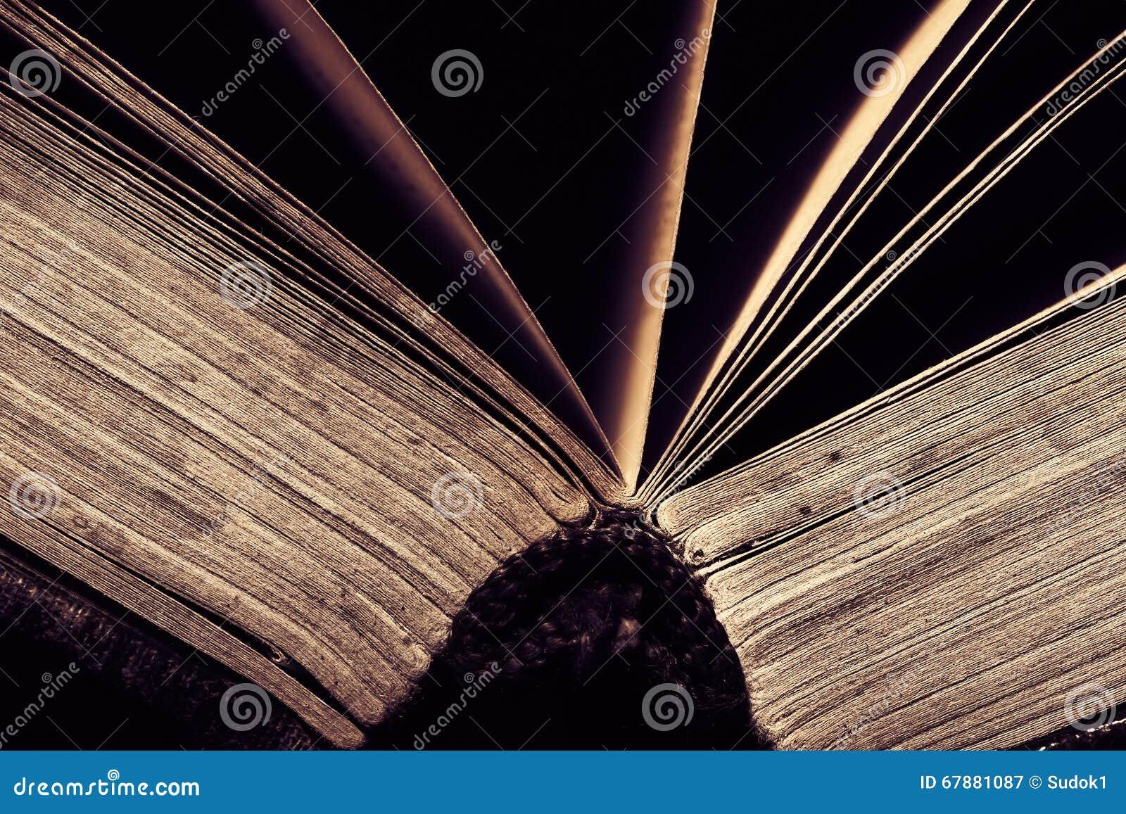 Épine du macro ouvert de livre