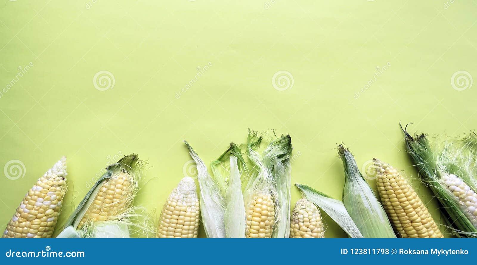 Épis de maïs naturels mûrs Consommation saine Produits qui respecte l environnement Aliment biologique