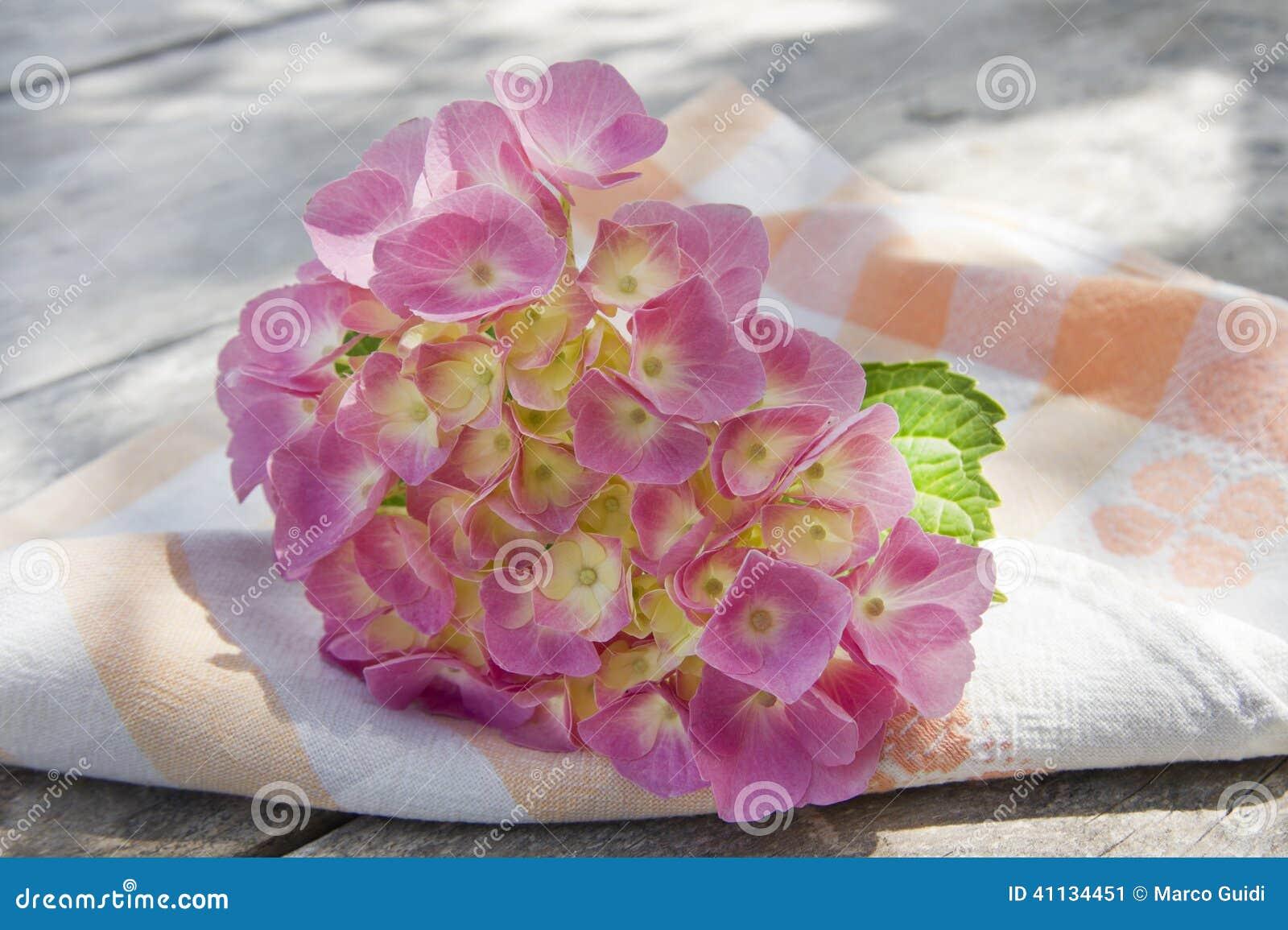Época de hortensias