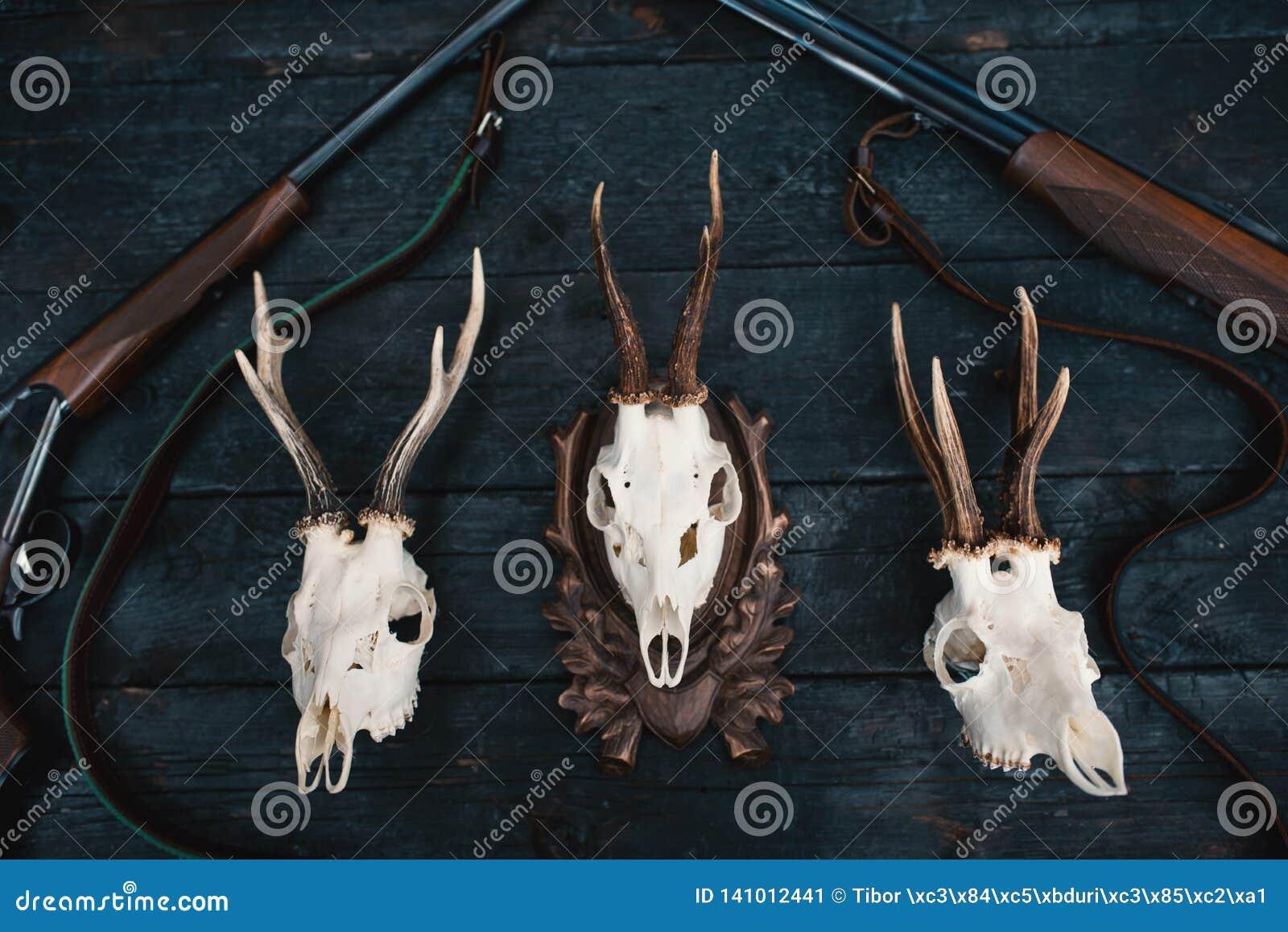 Équipement professionnel de chasseurs pour la chasse Fusil, couteaux, sculps de trophée, munitions, et d autres sur un fond noir