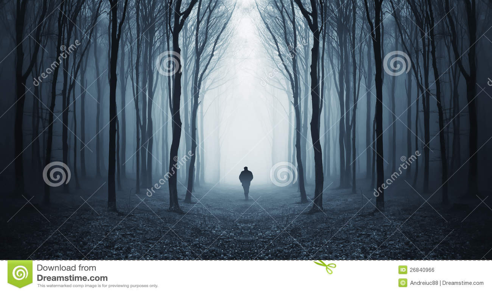 Équipez la marche dans une forêt foncée de fairytalke avec le regain