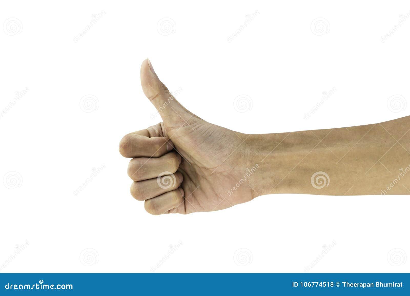 Équipez la représentation de pouce de geste de main bonne, comme, correct, convenez, succès