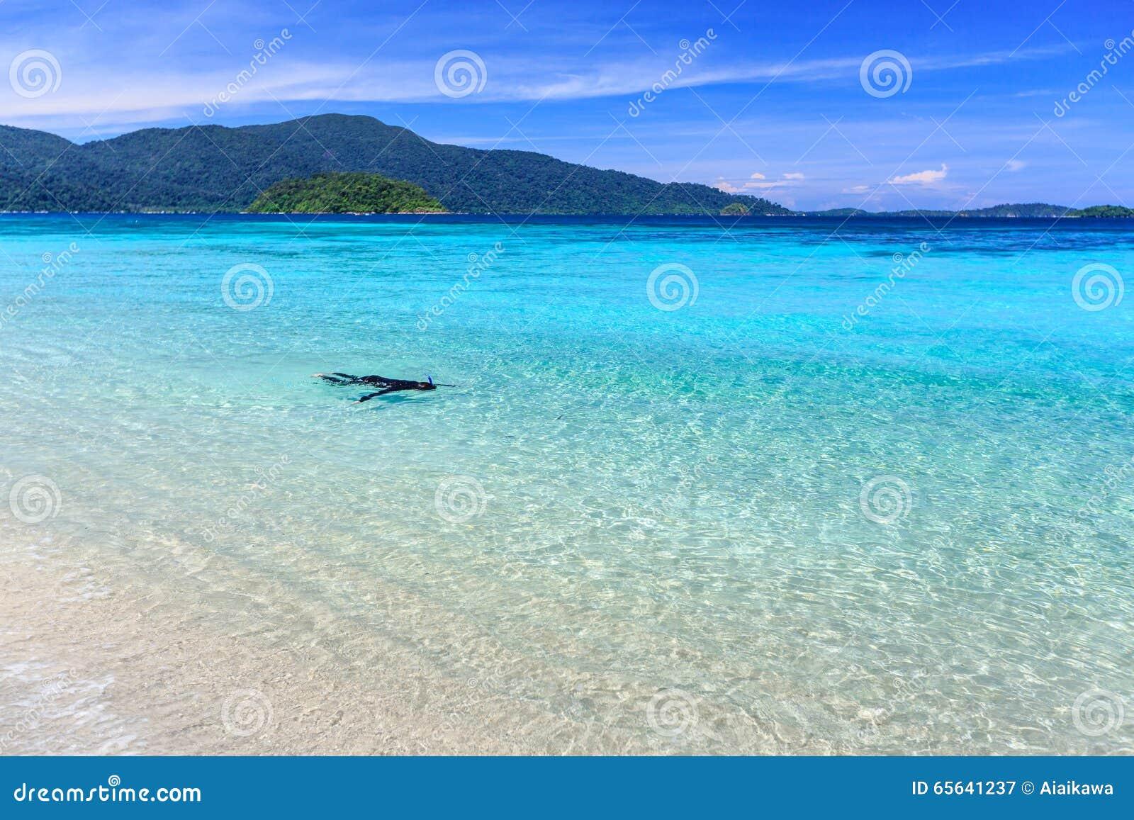 Équipez naviguer au schnorchel dans l eau clair comme de l eau de roche de turquoise au beac tropical