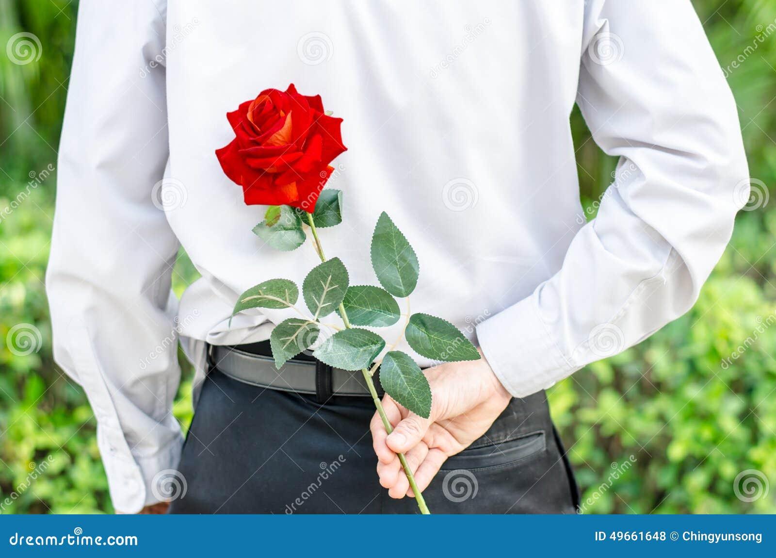 Équipez tenir une rose rouge derrière le sien de retour pour sa femme