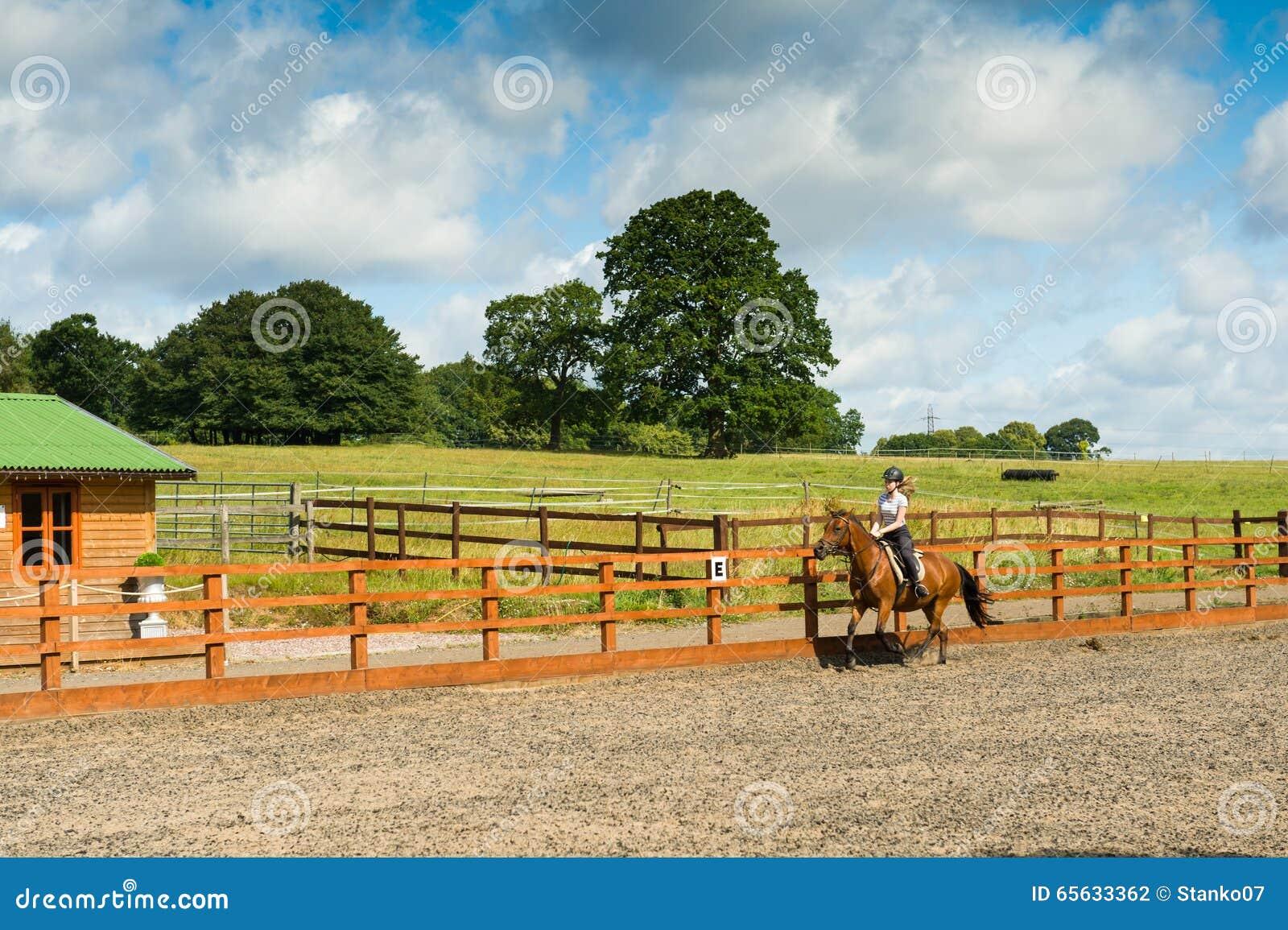 Équitation au pré