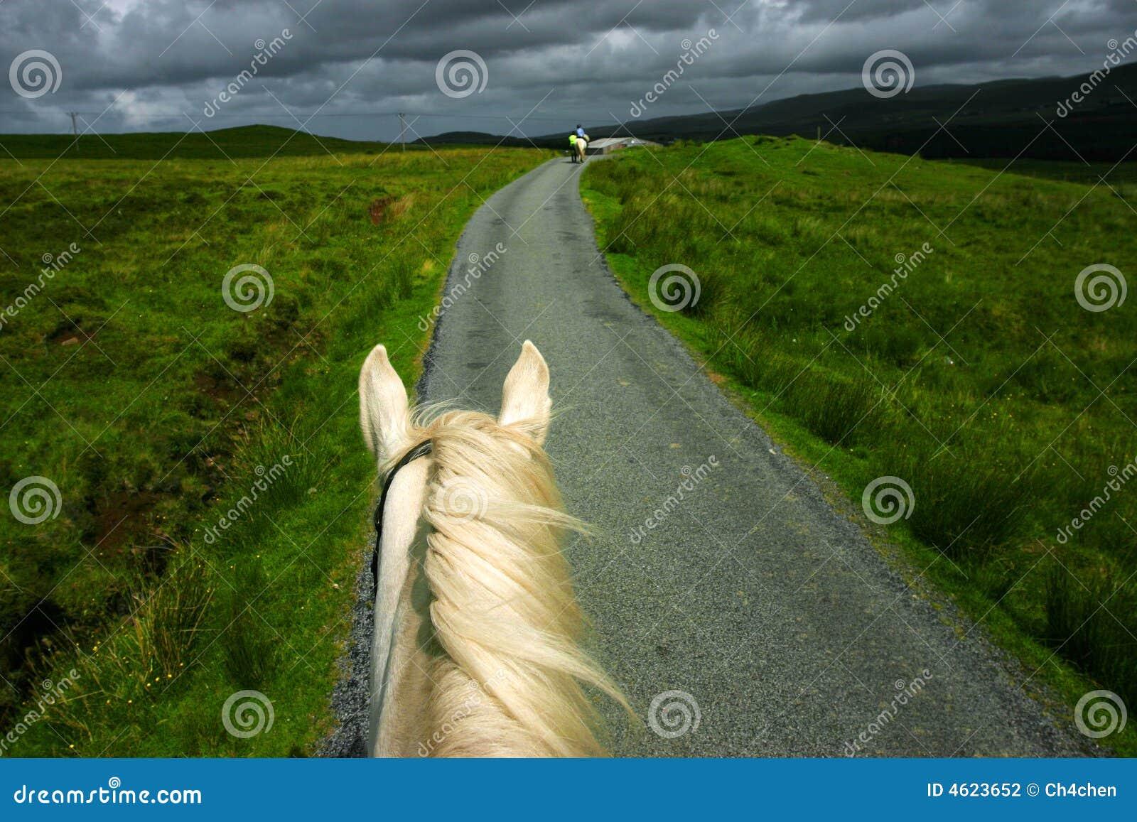 Équitation dans Portree