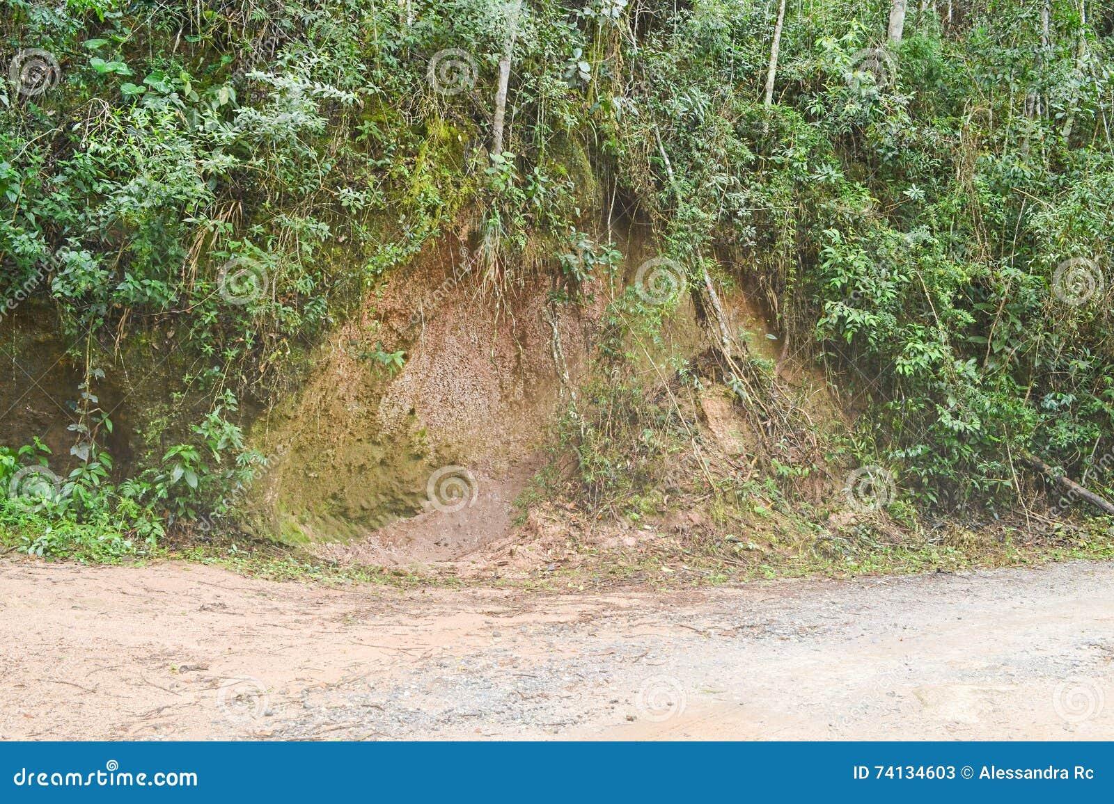 Érosion de bord de la route