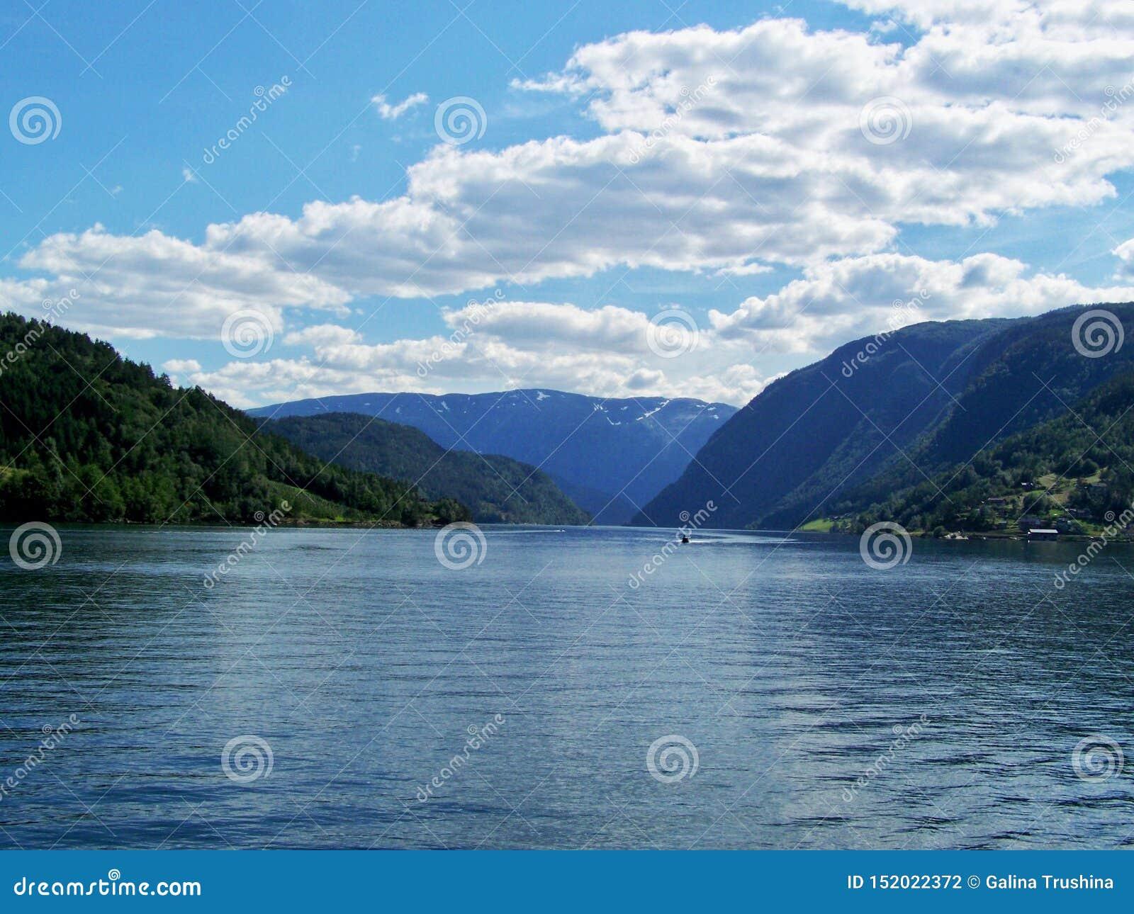 Été de la Norvège de nature L eau, fjord de forêt un jour ensoleillé