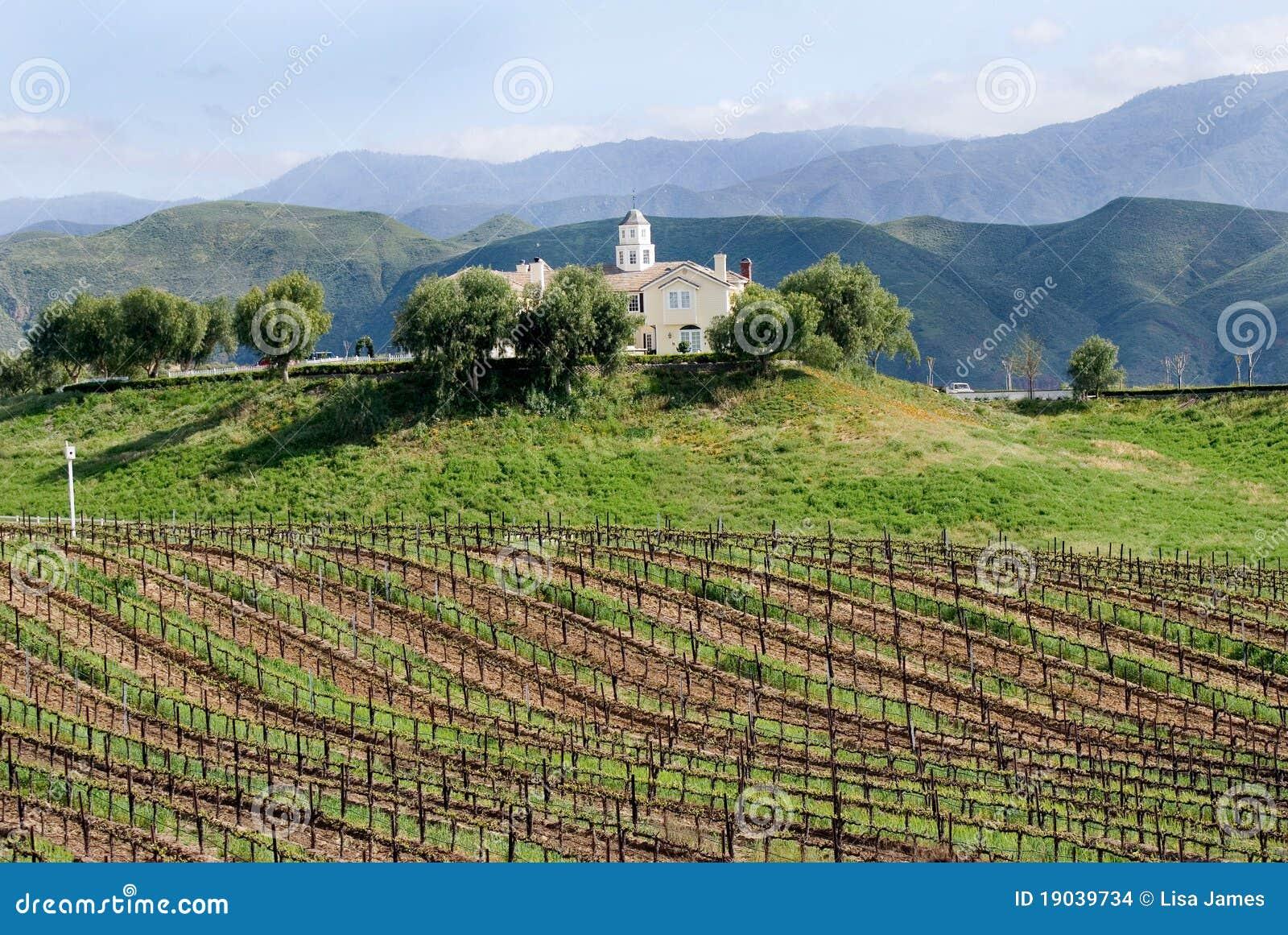 Établissement vinicole de la Californie