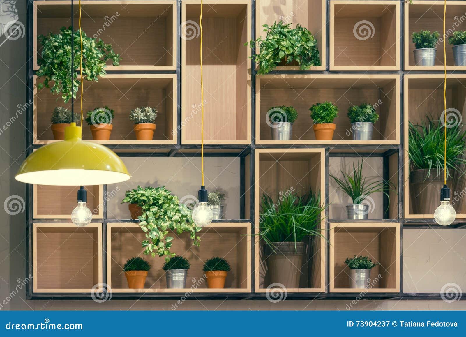 Etagere Pour Plantes Interieures Étagères décoratives intérieures de café image stock - image