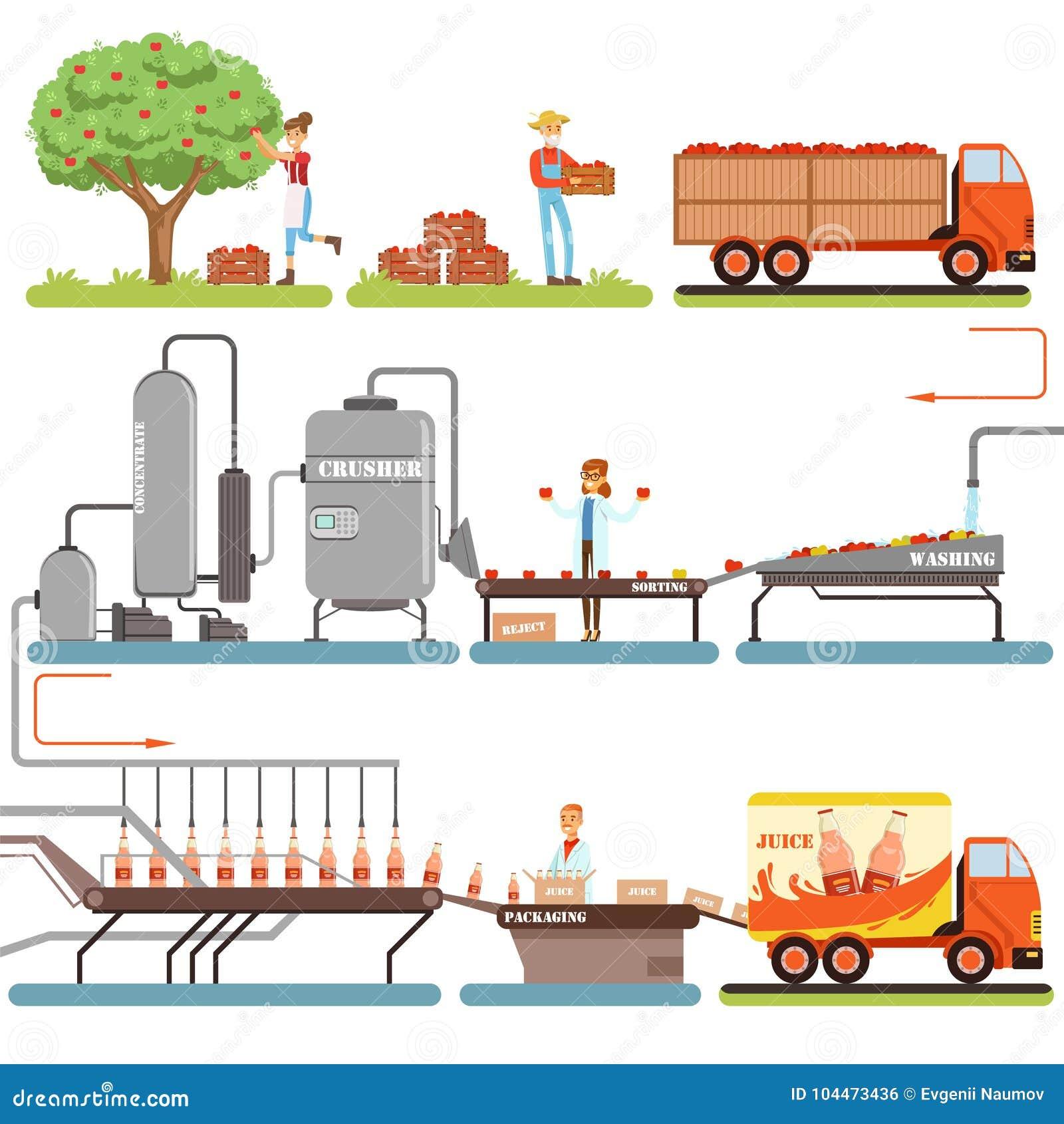 Étapes de processus de fabrication de jus, usine produisant le jus de pomme à partir des illustrations fraîches de vecteur de pom